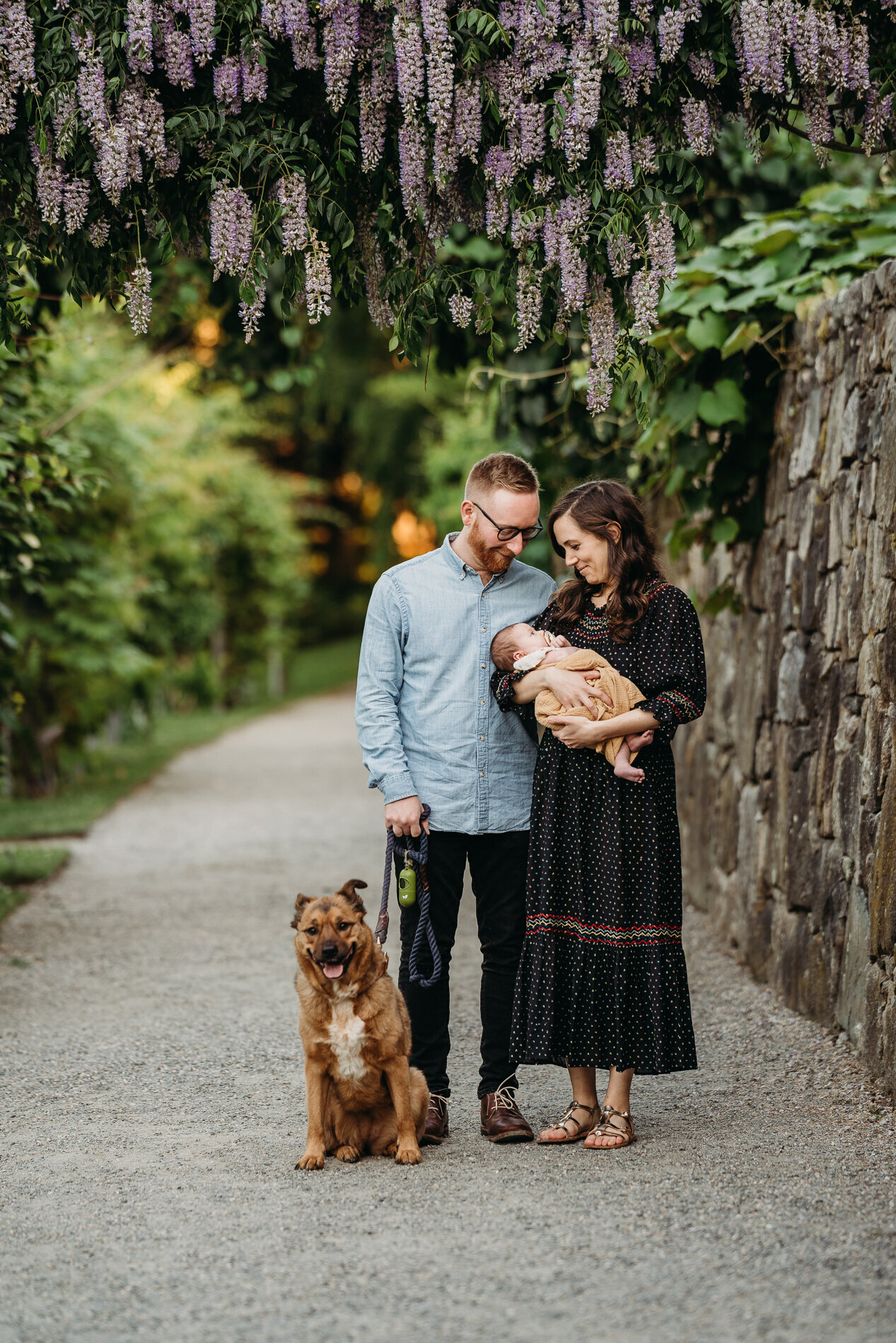 couple stands under lilacs with newborn and dog