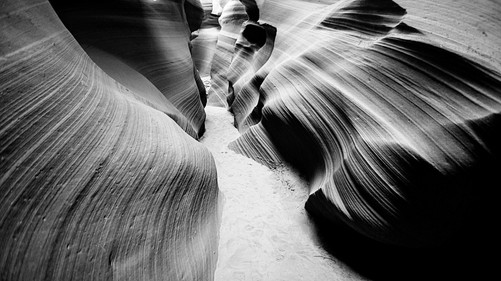 Sasha_Reiko_Photography_Travel_Utah_Arches_Canyon_Lands_Zion_Grand_Canyon-41