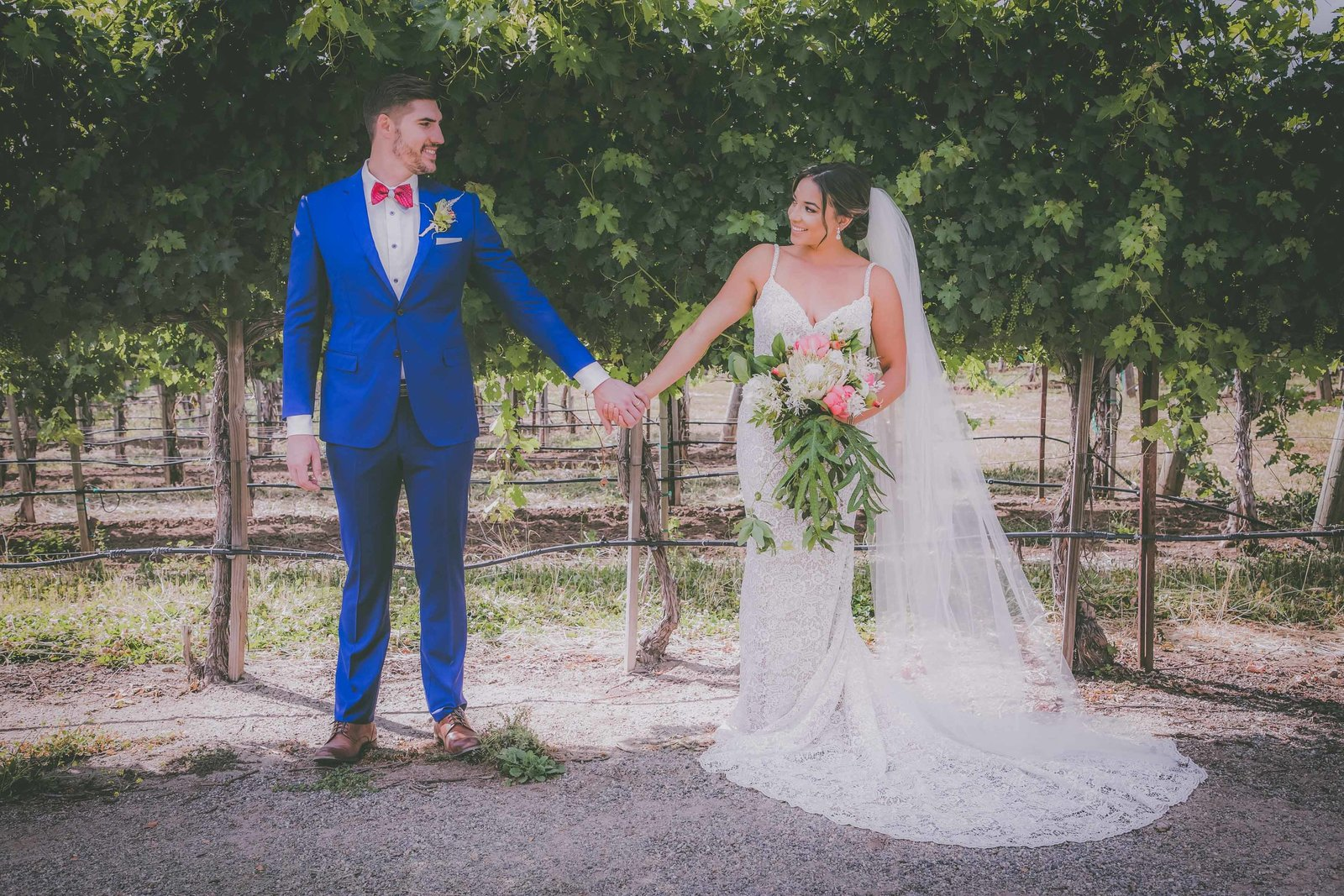 Groom and bride look and smile at each other while holding hands in California vineyard.