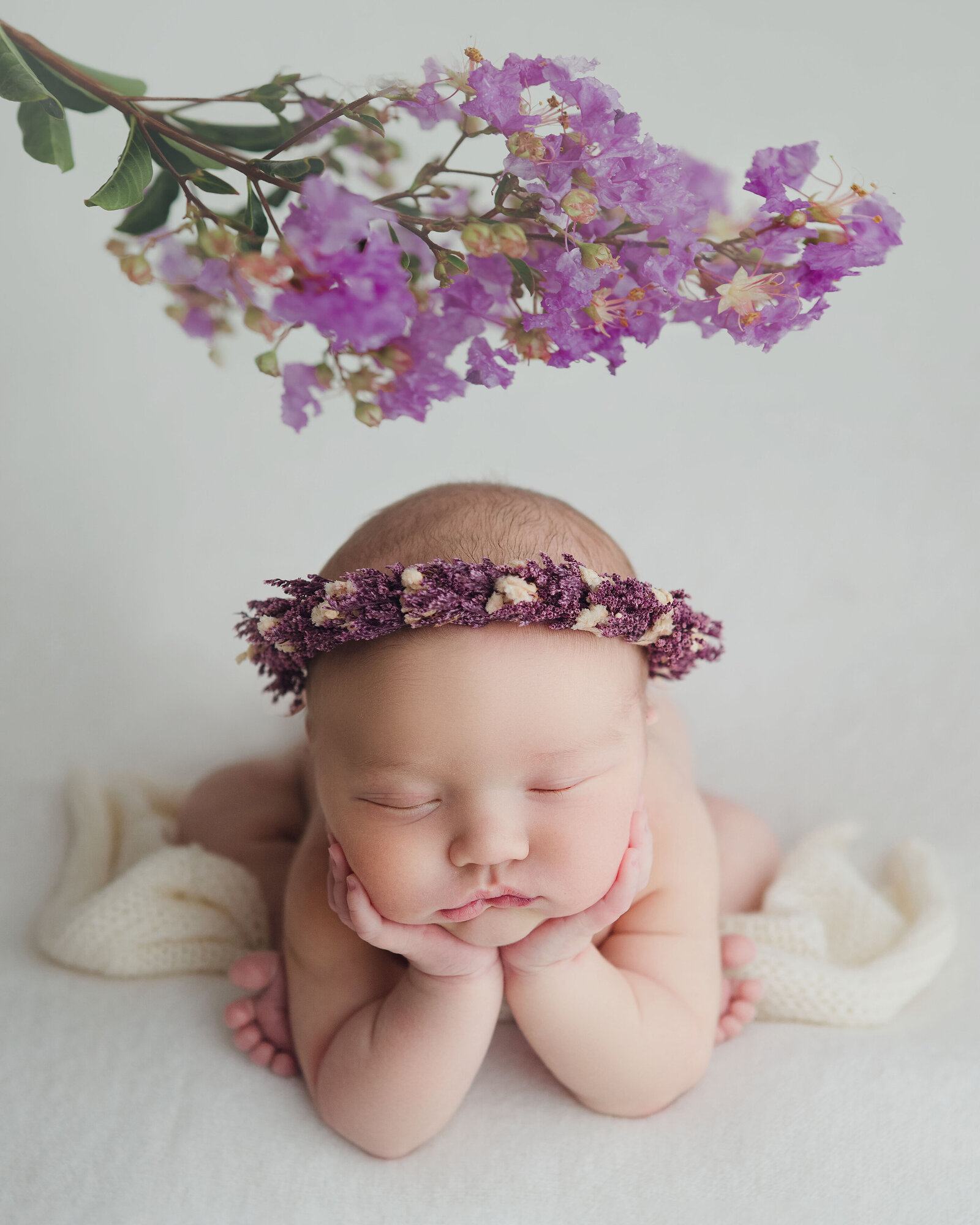 Professional studio portrait of newborn baby asleep with flower crown