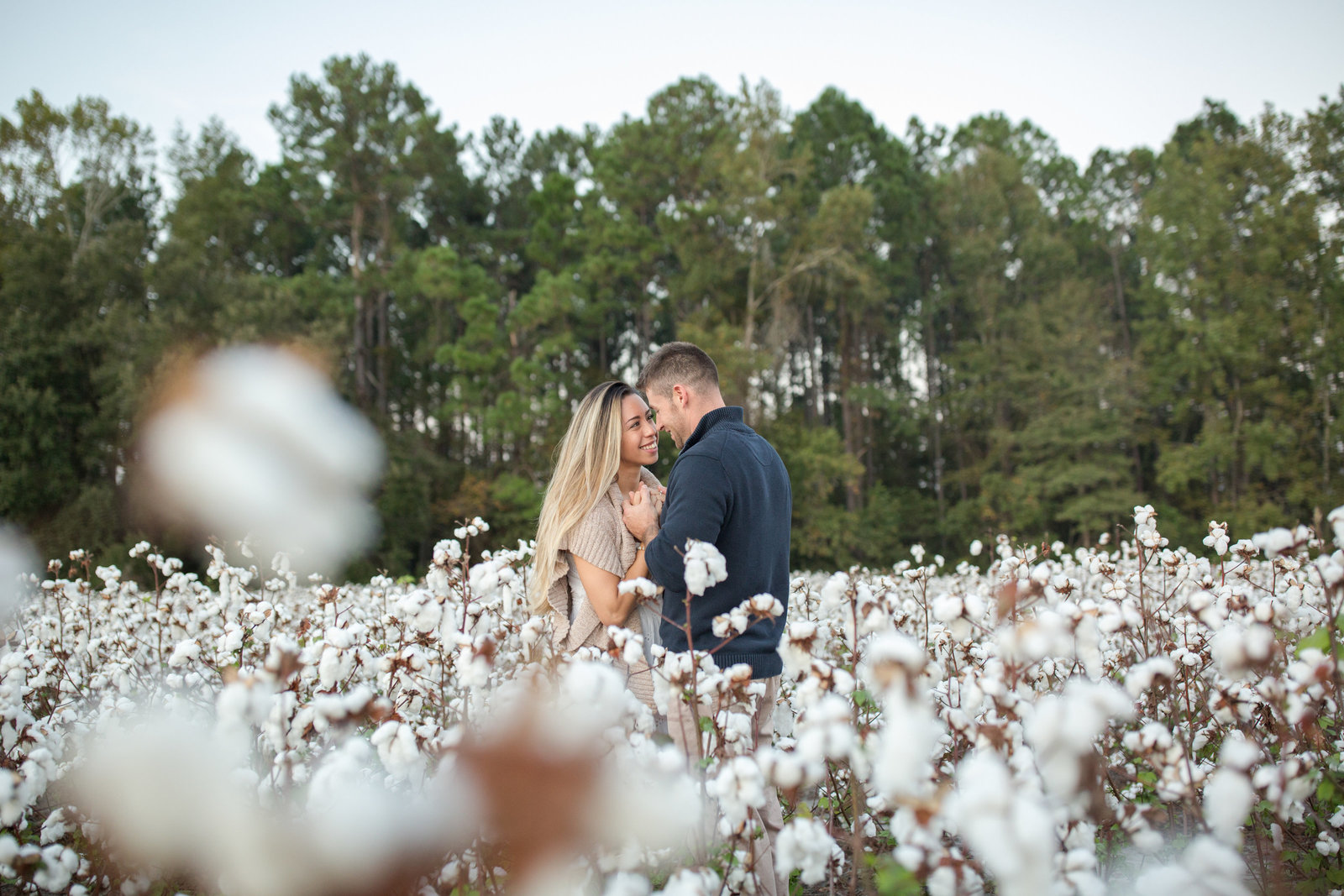 engaged couple in cotton field