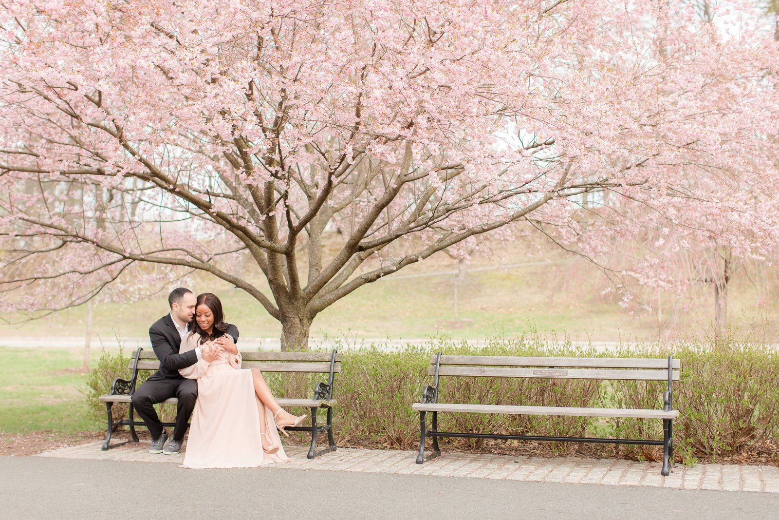 cherry-blossom-engagement_0003