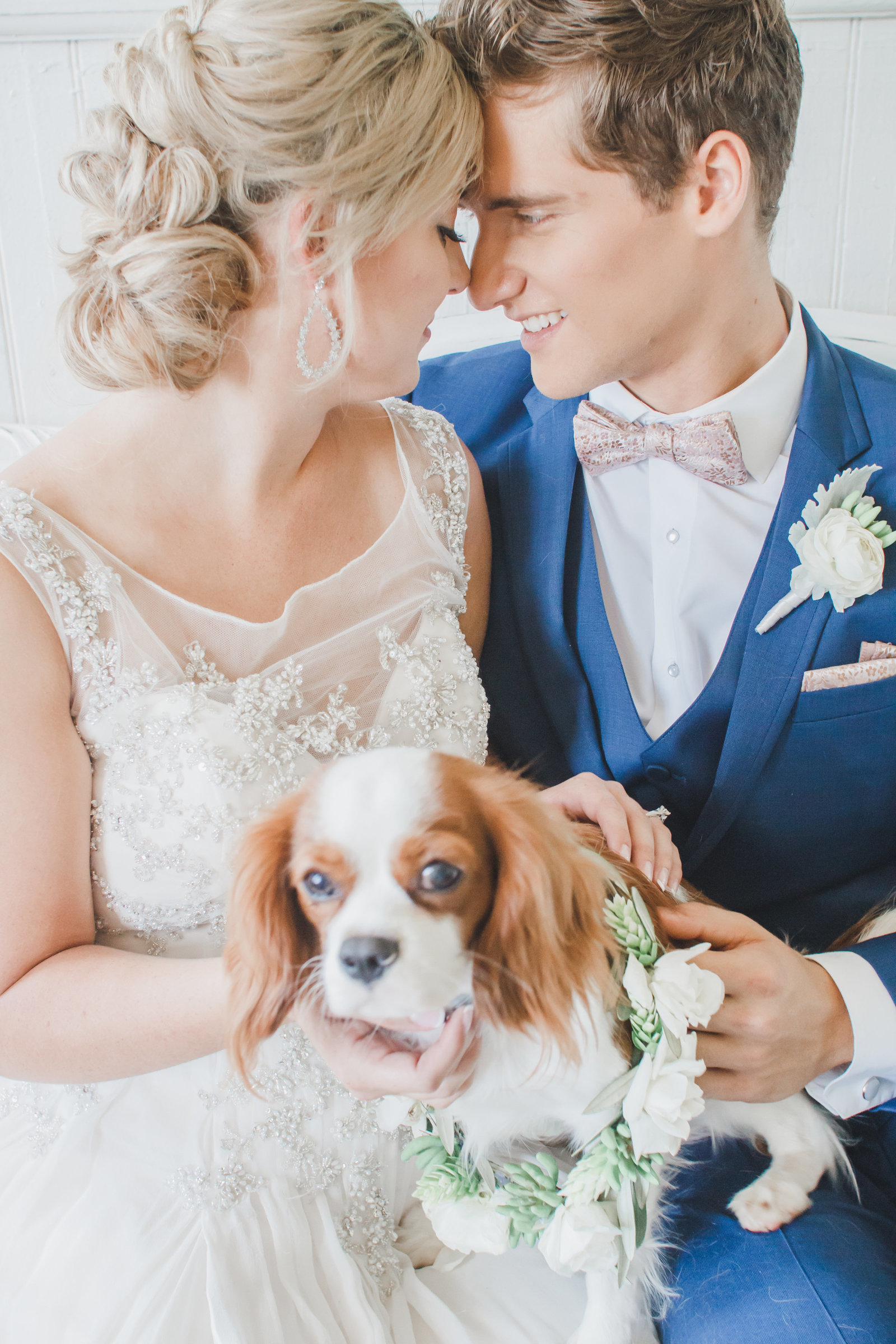 Nashville Wedding Photography | Wedding Pictures with Puppies