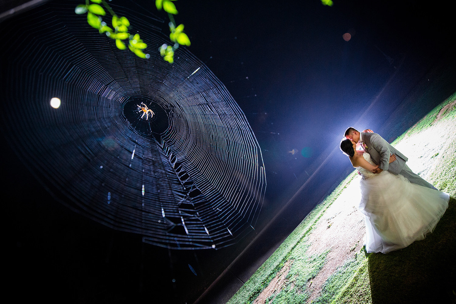 bride and groom at the beautiful wedgewood night image