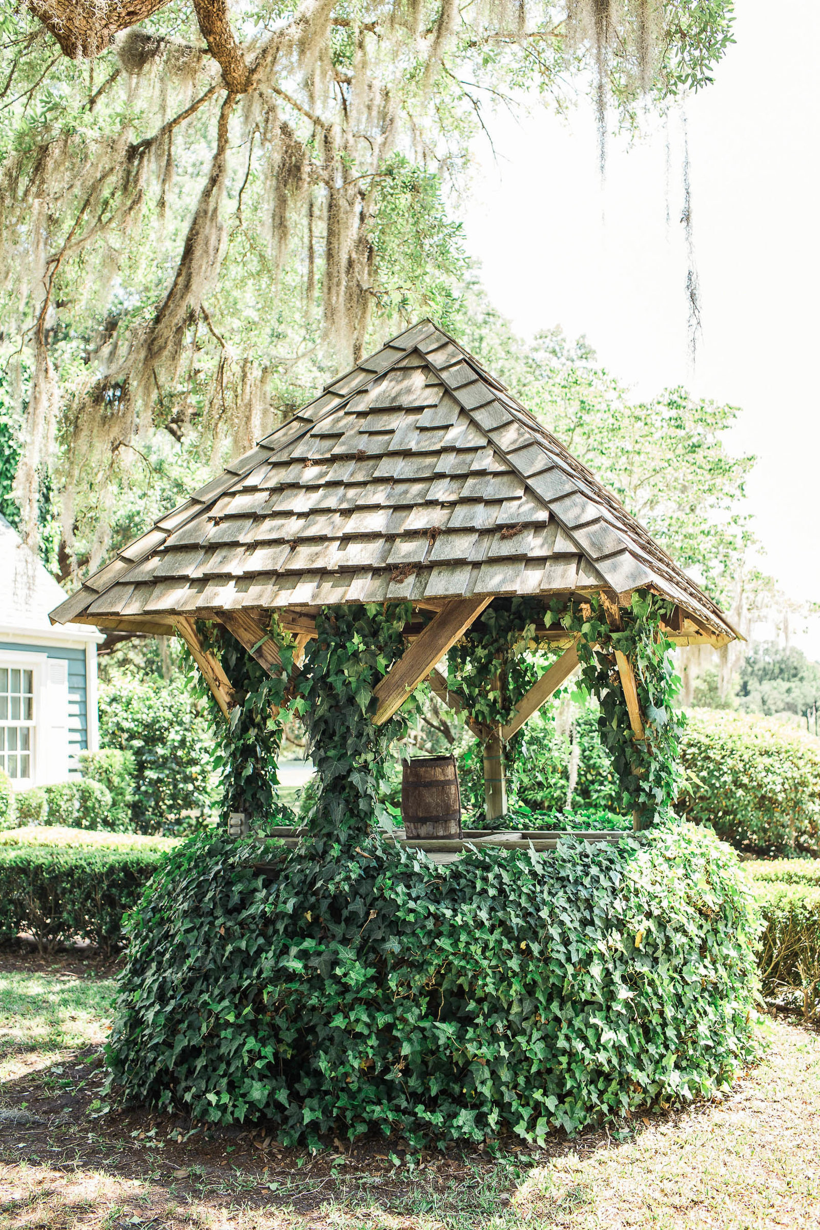 Ivy covered well sits under an oak tree, Oakland Plantation, Mt Pleasant, South Carolina