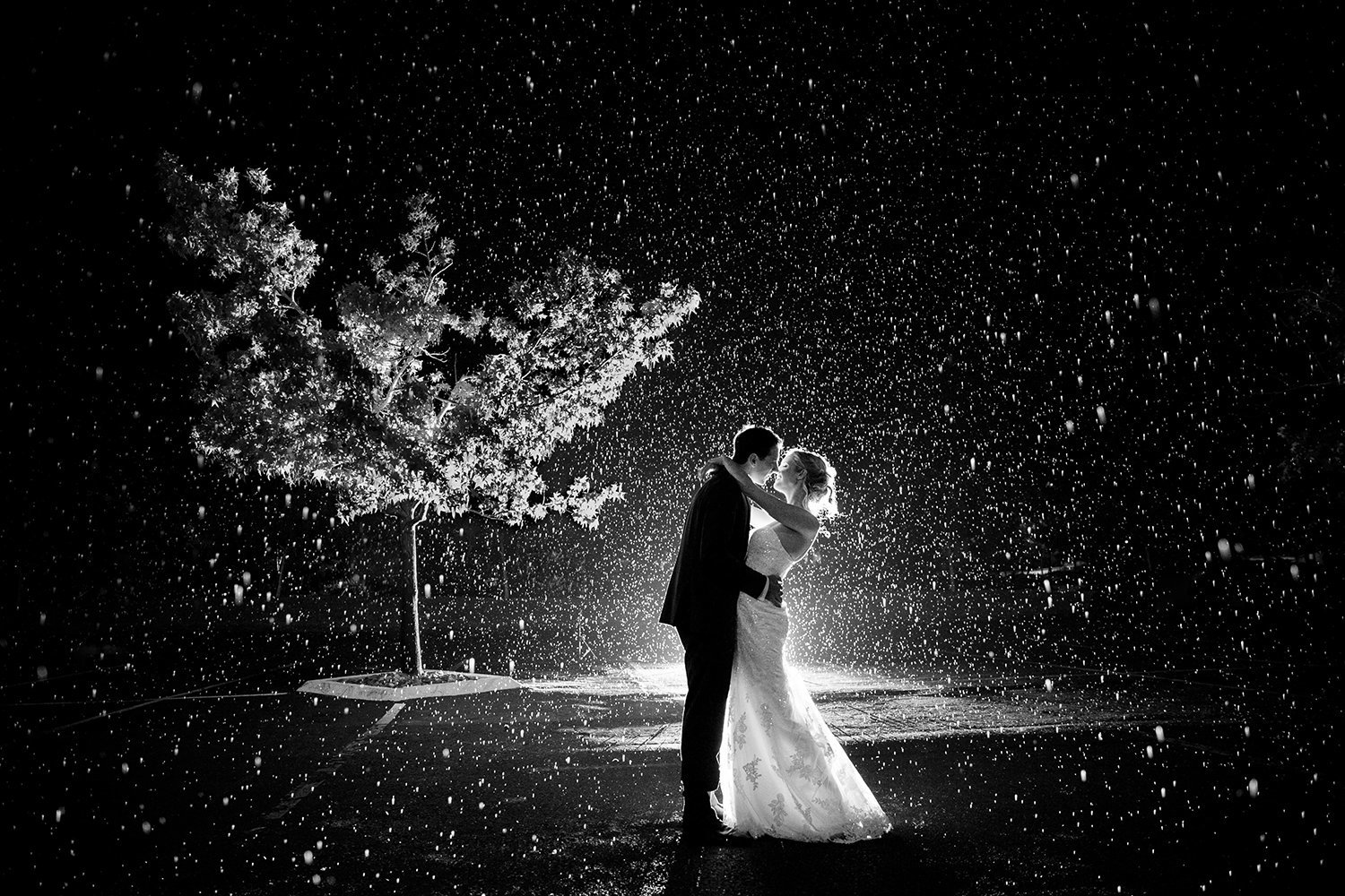 Karl Strauss wedding photos gorgeous rain