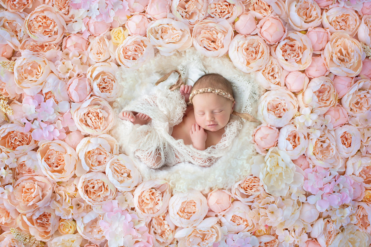 newborn in flowers231