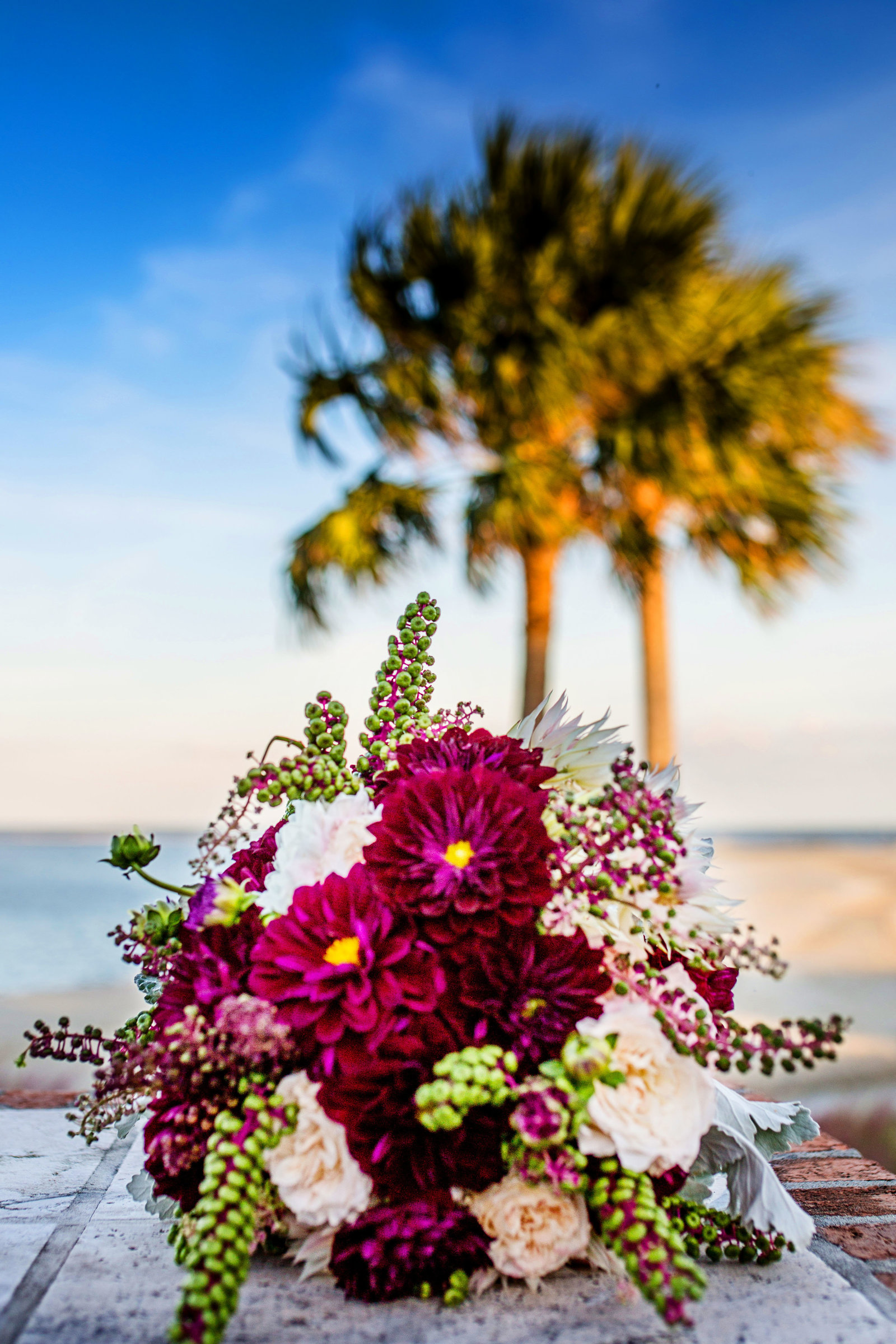 Palm Tree and flowers, Bobbi Brinkman Photography