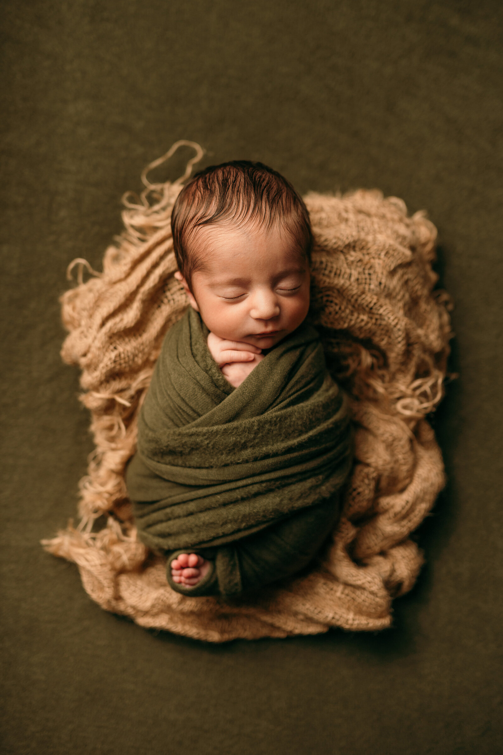 dc newborn photographer