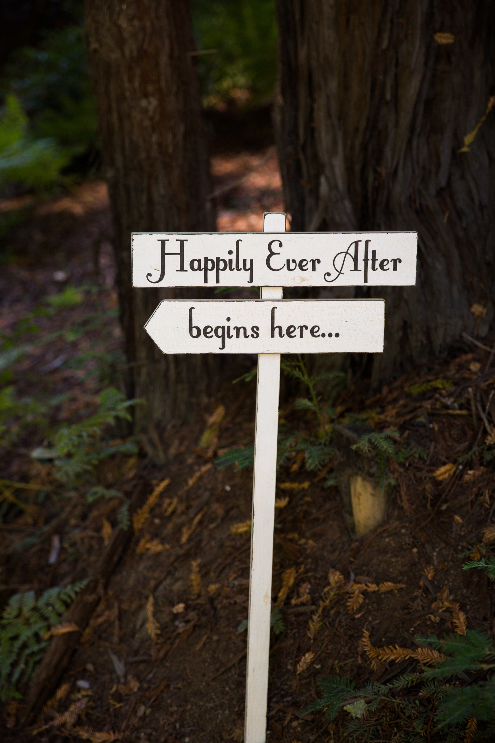 nestldown wedding forest los gatos california 4