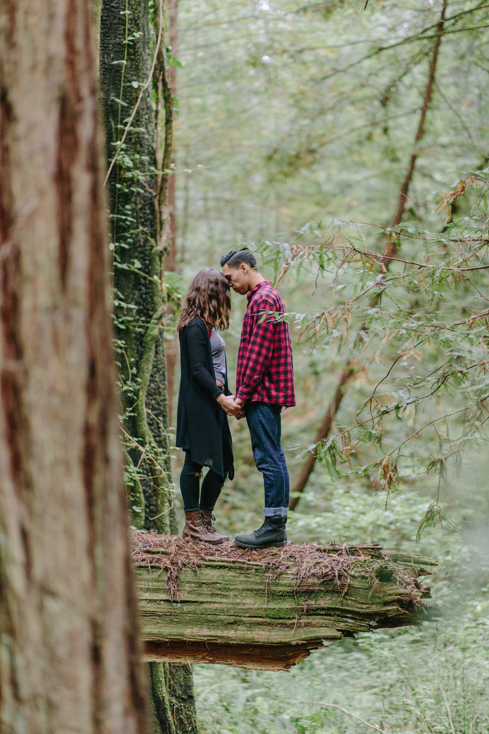 Redwood National Park Avenue of the Giants Engagement Session -7695