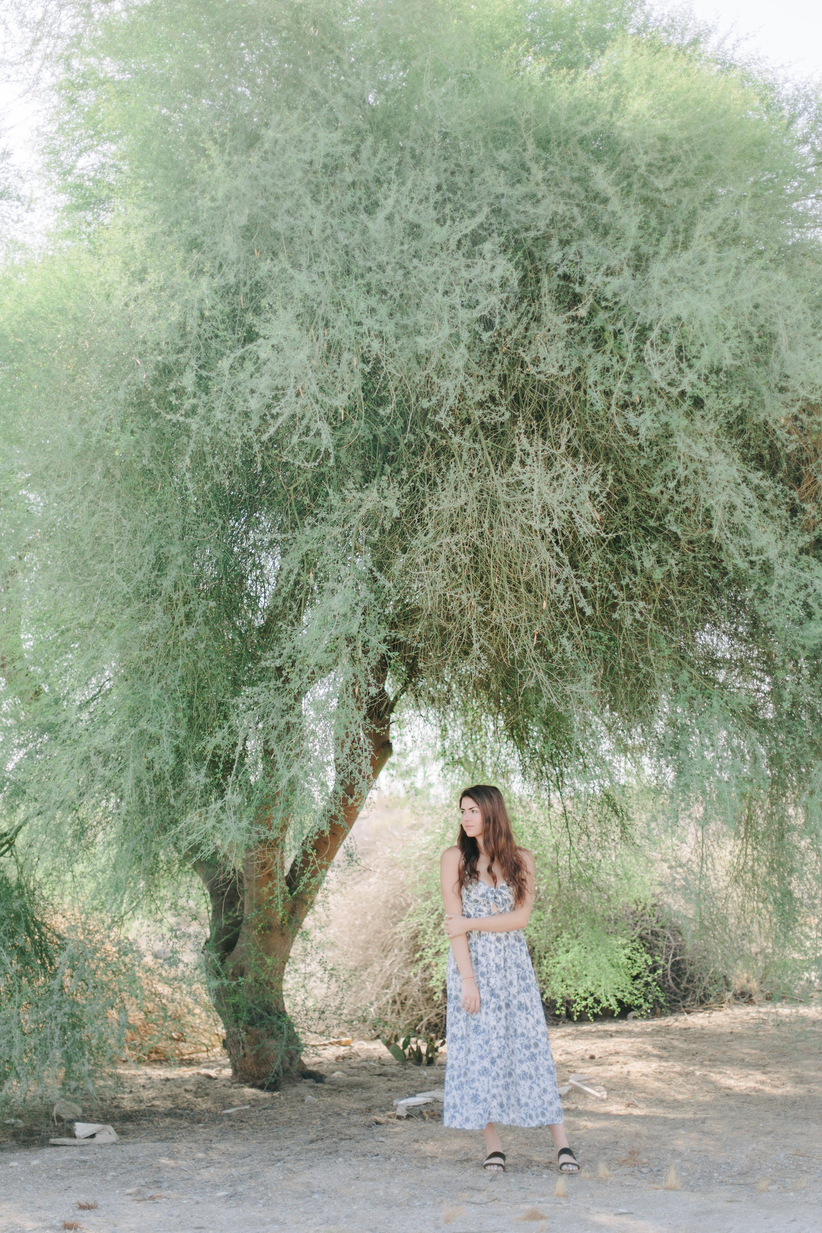 Palm Springs Coachella Valley Shoot Angelika Johns Photography-1805