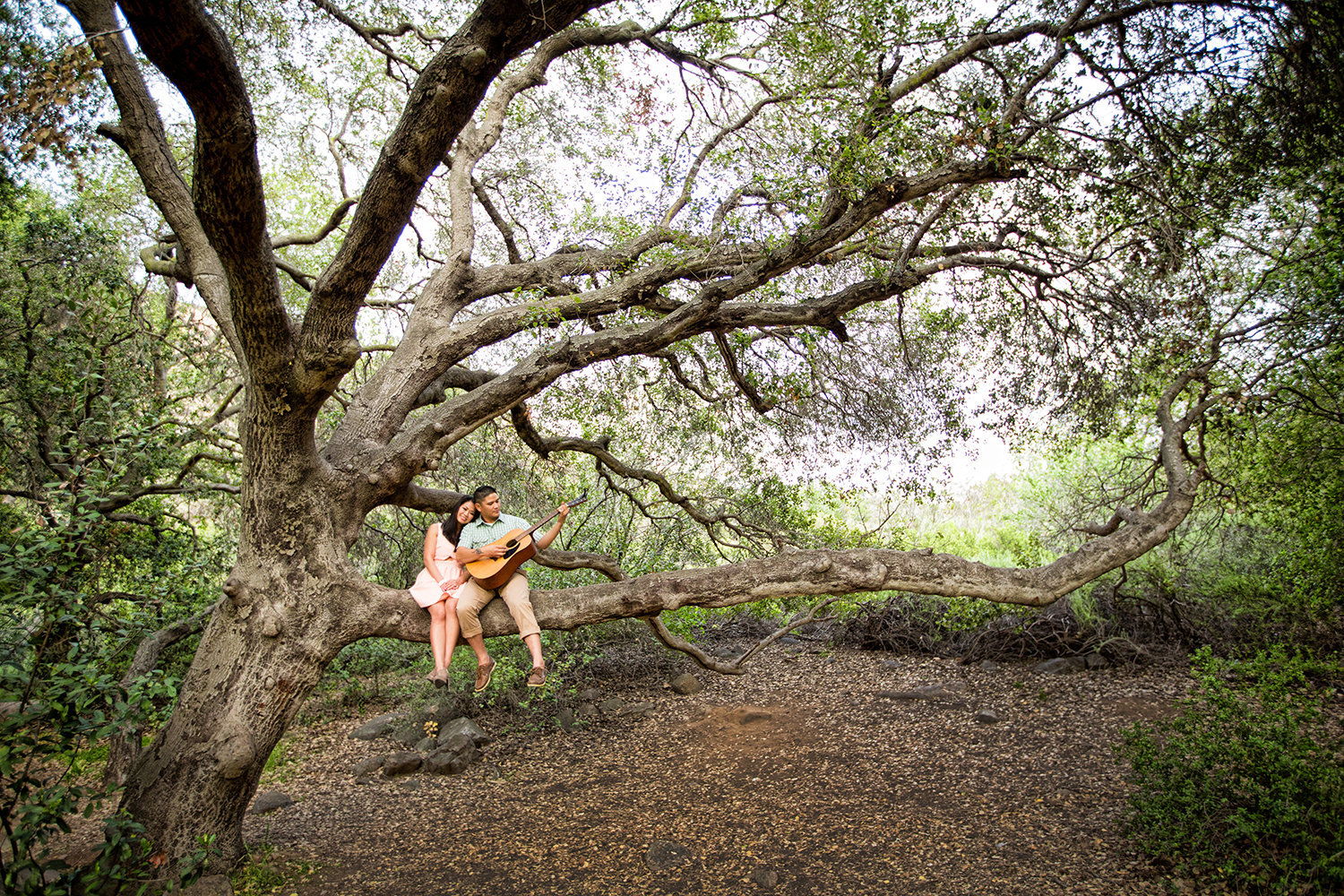 Mission Trails engagement photos with old tree rustic