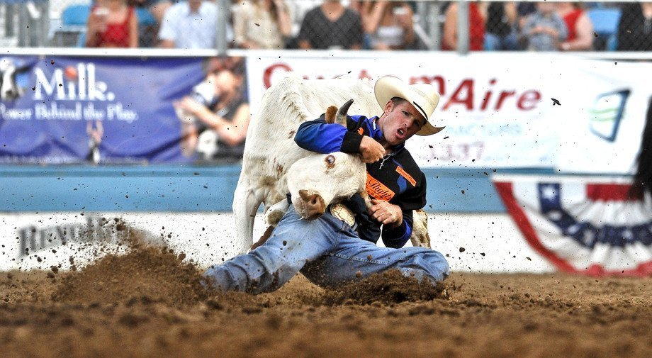 Huntington-WV-Rodeo-Bull