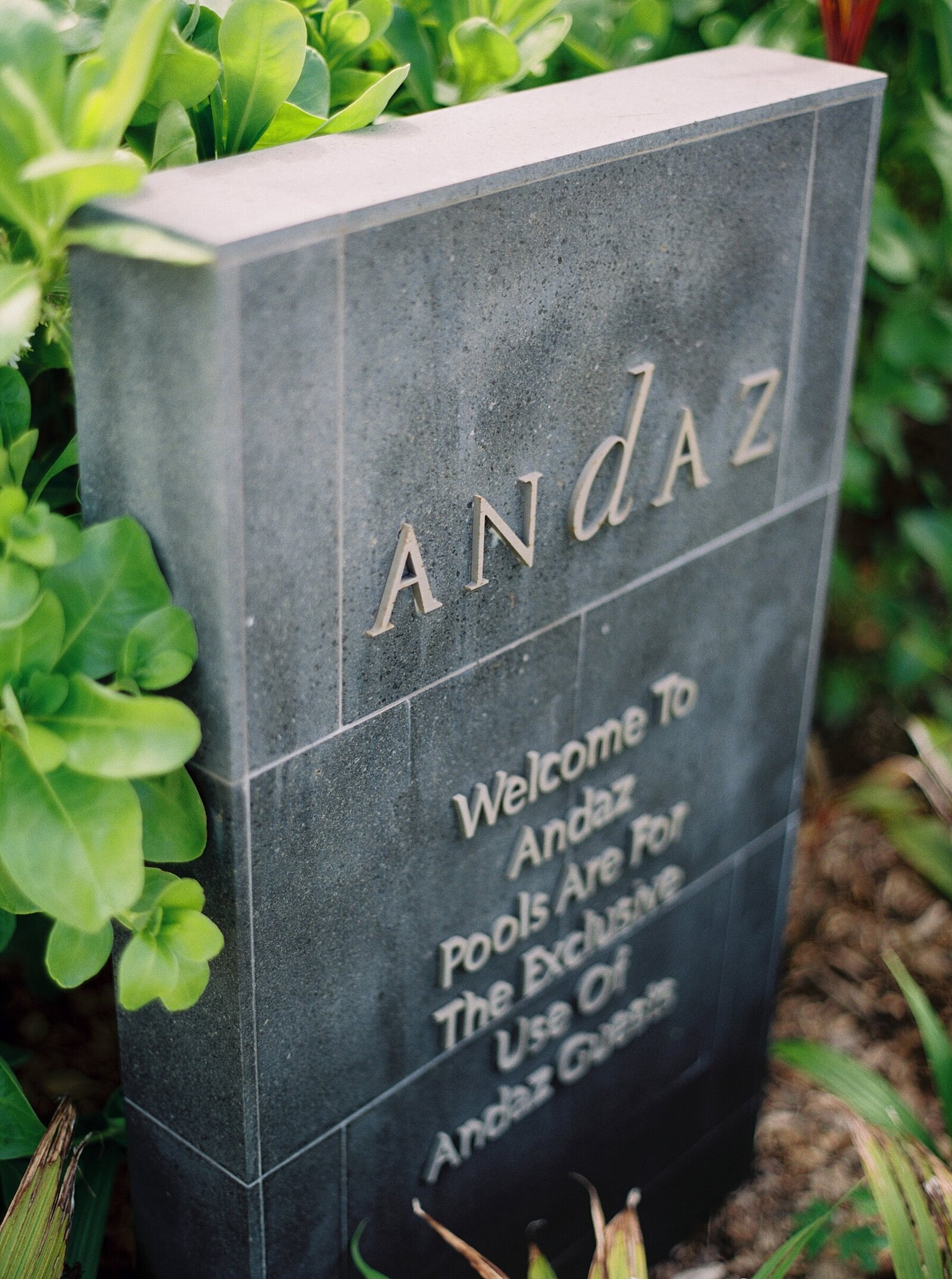 maui-hawaii-film-photographer-destination-andaz_0009