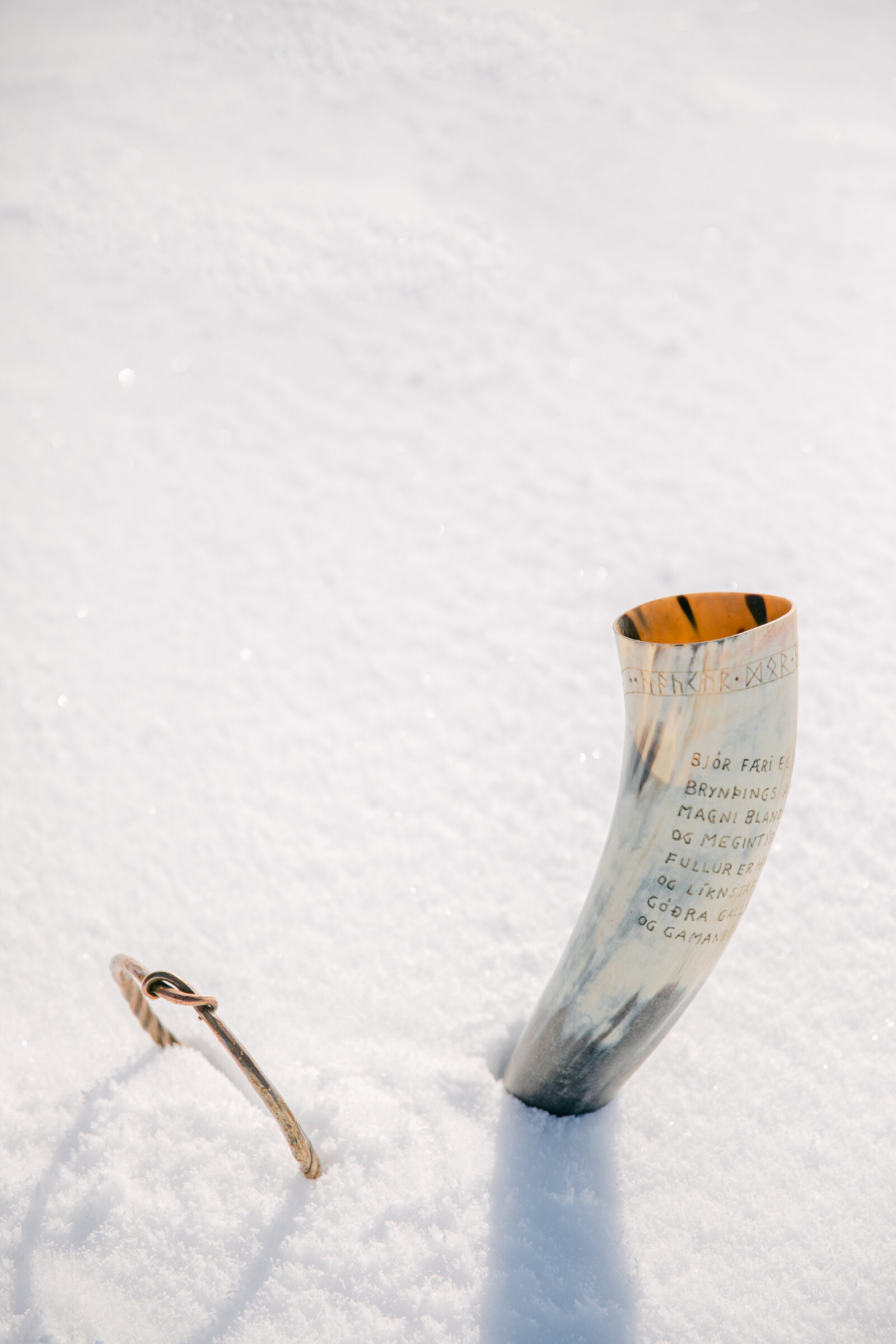 horn mug in the snow on a glacier in iceland
