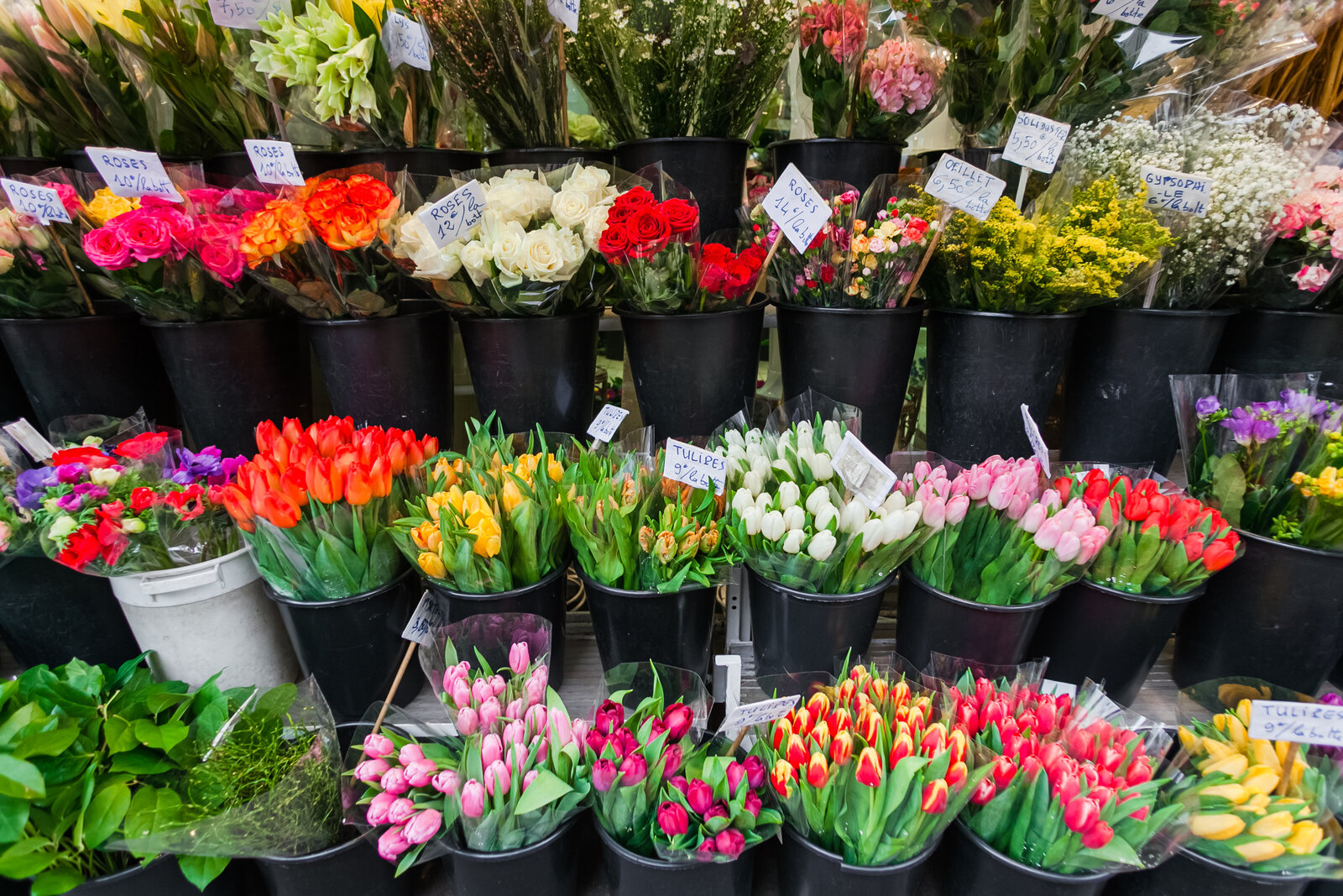 062-KBP-fresh-flowers-Paris-France