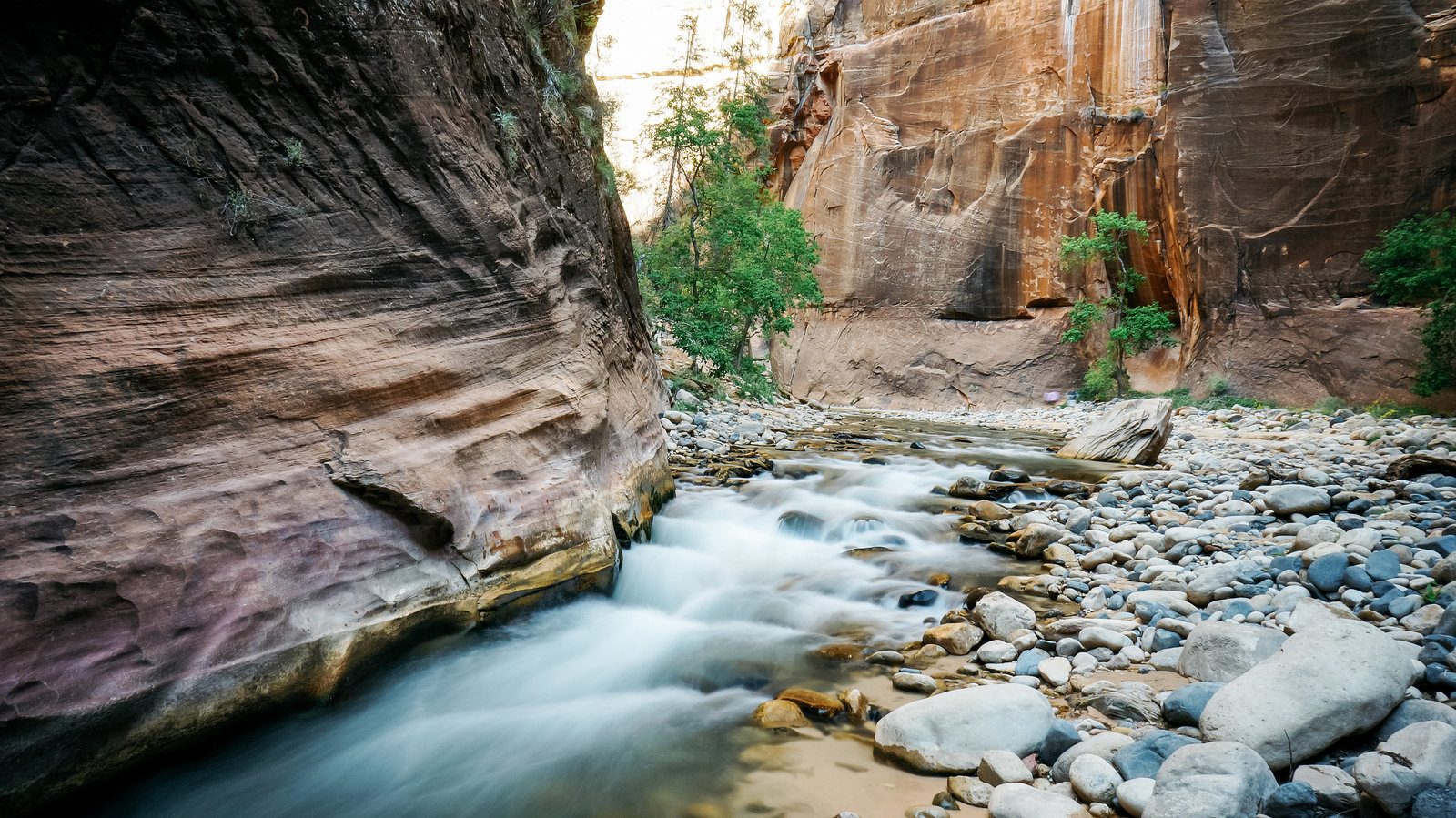 Sasha_Reiko_Photography_Travel_Utah_Arches_Canyon_Lands_Zion_Grand_Canyon-54