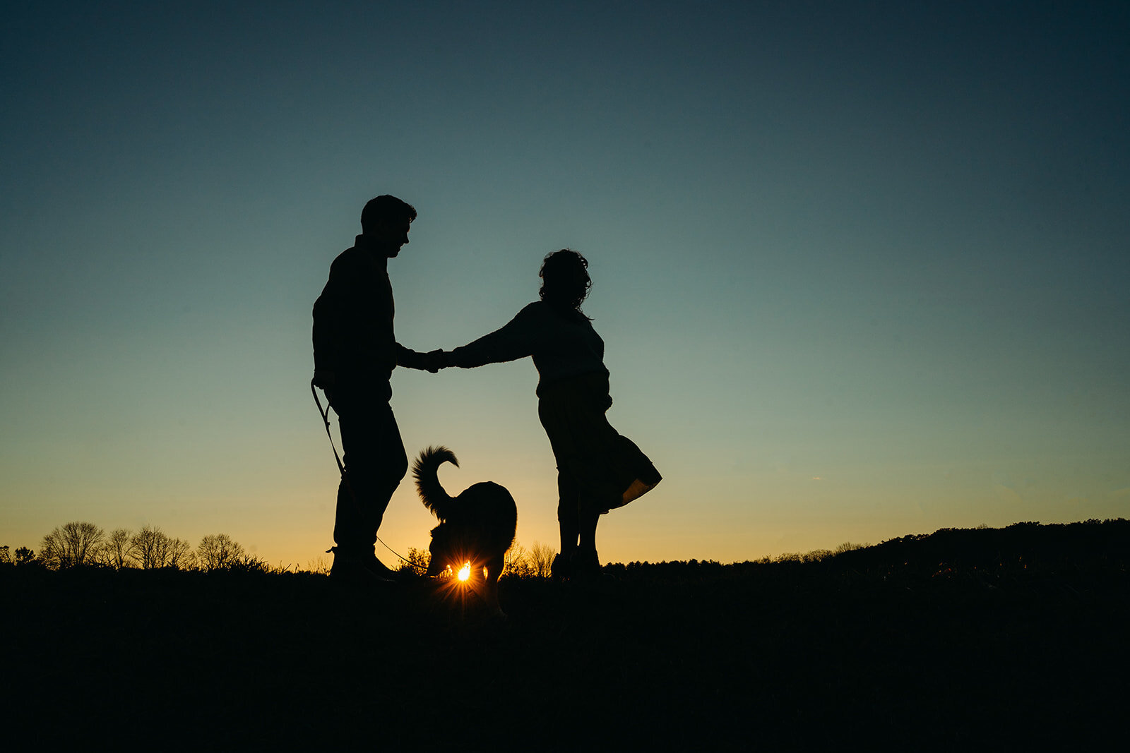 silhouette of pregnant couple with dog at sunset