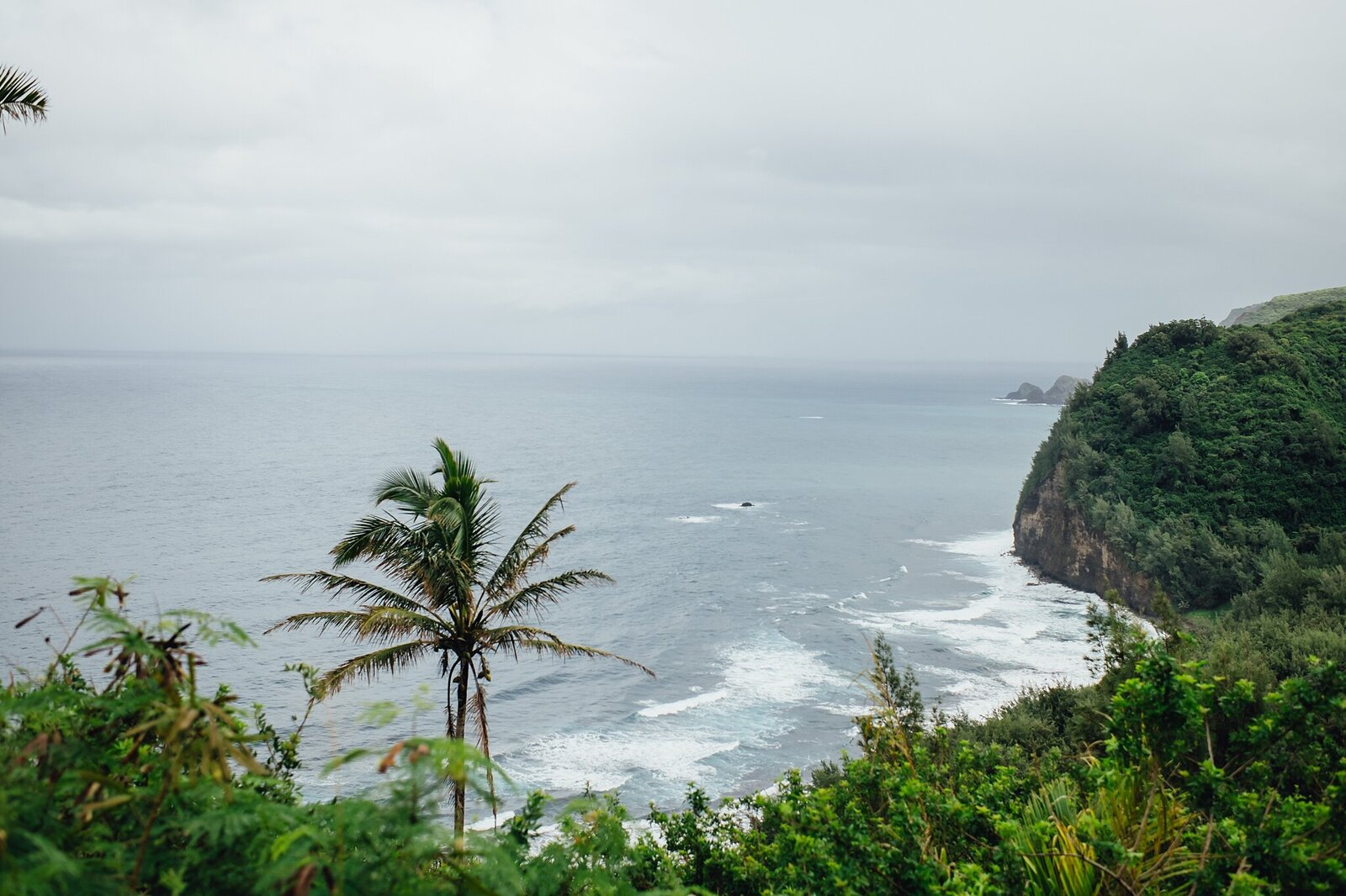 views of pololu valley from the overlook