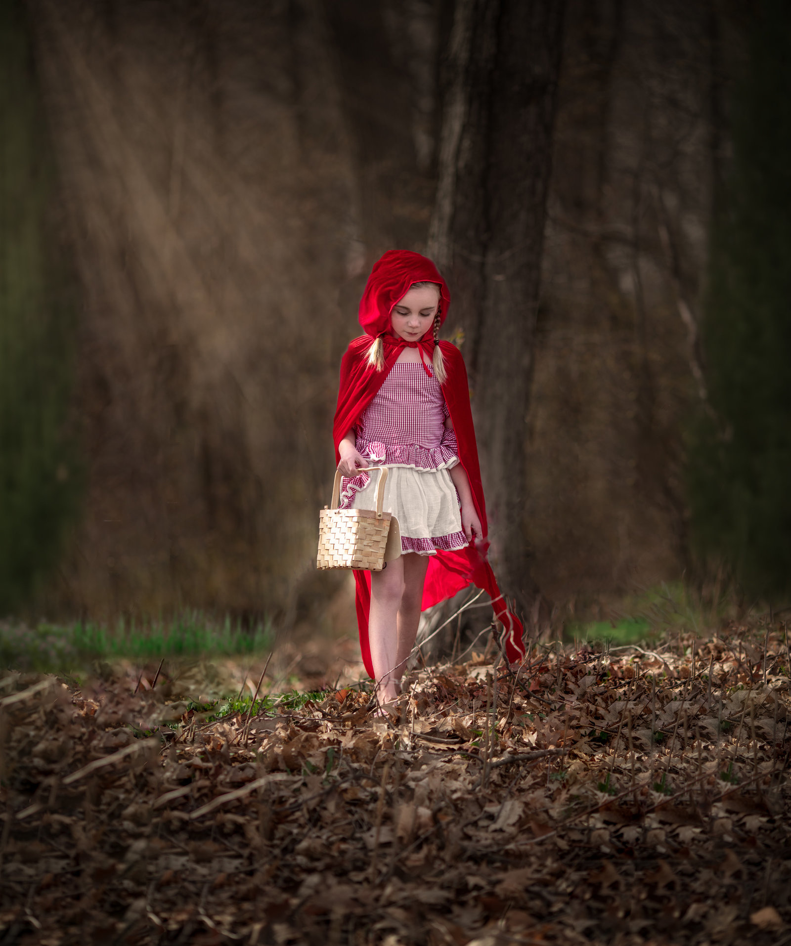 pretty dreams photography fairy tale photo session