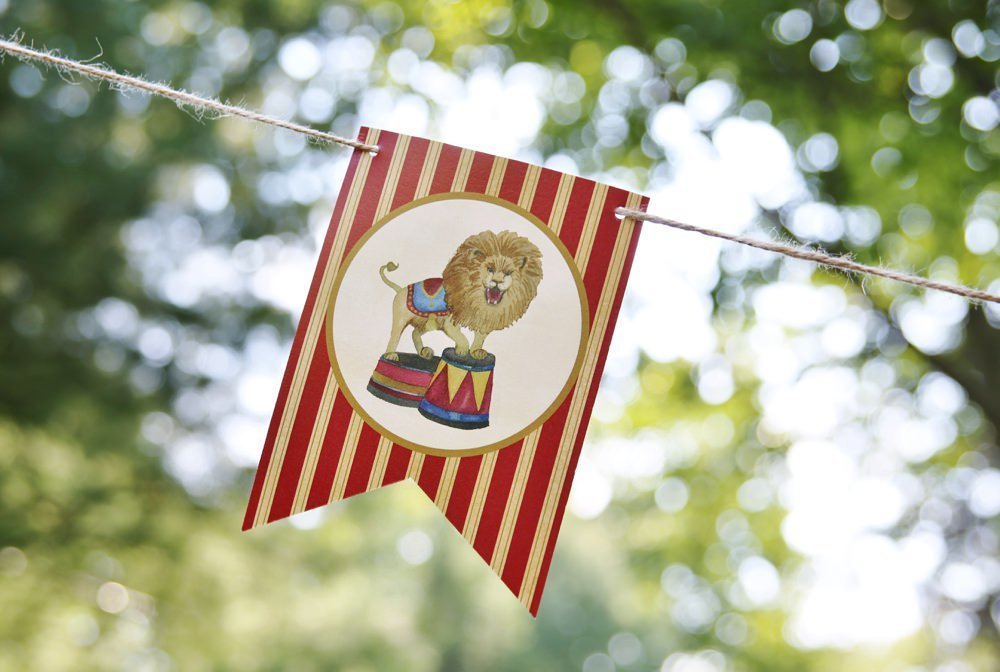 ct_party_planner_circus_birthday_0016