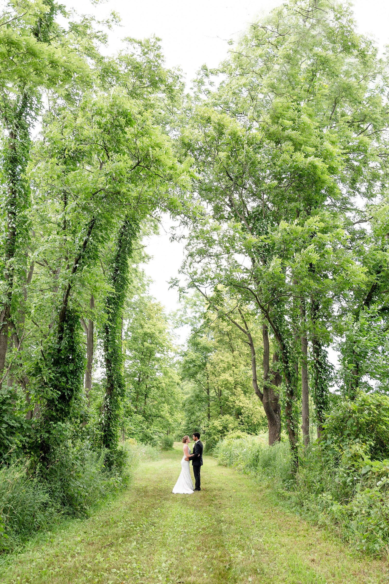 Bride-and-groom-under-a-towering-tree-canopy-on-her-grandmothers-farm-in-Mount-Brydges-Ontario