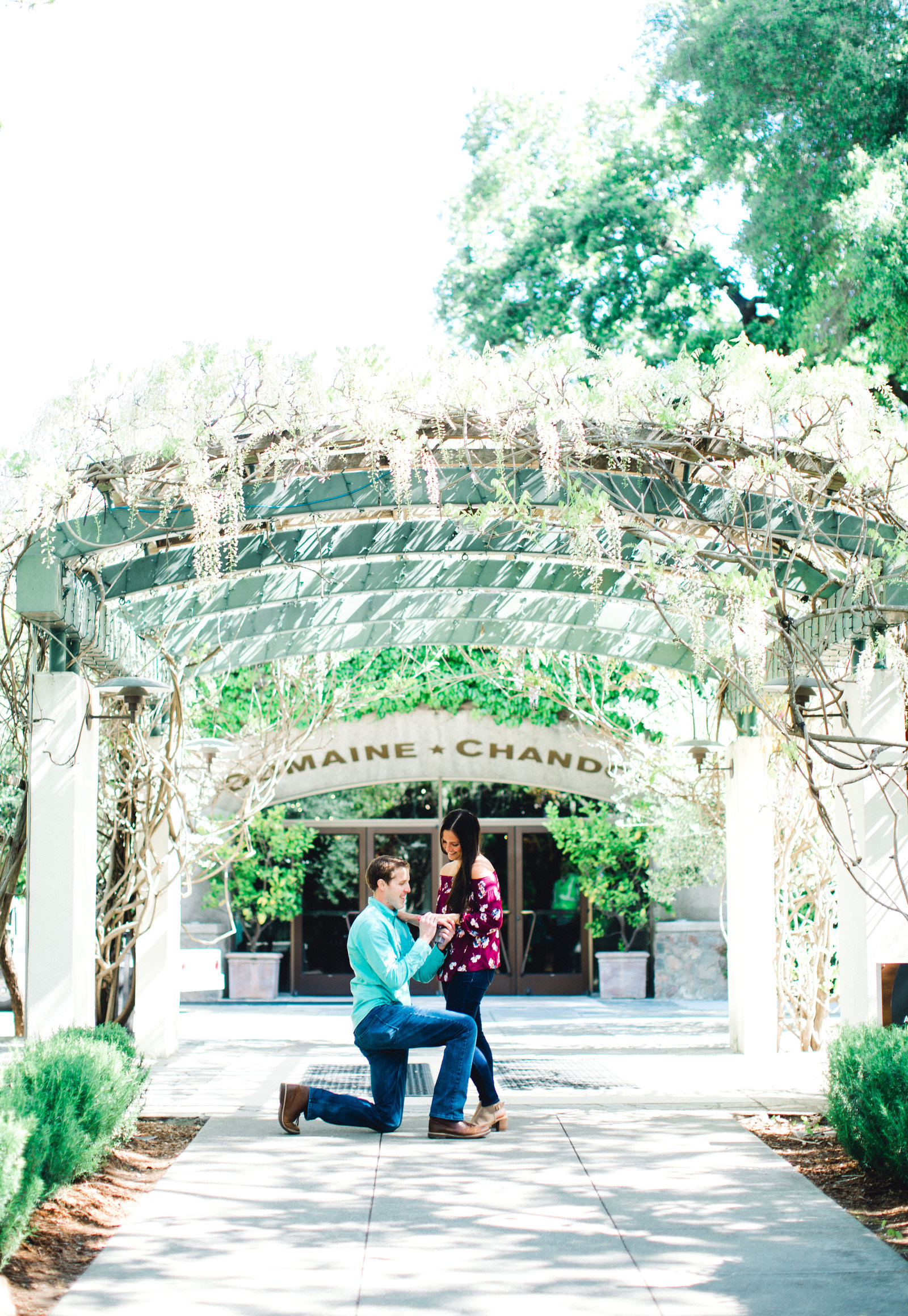 proposal at domaine chandon in napa california