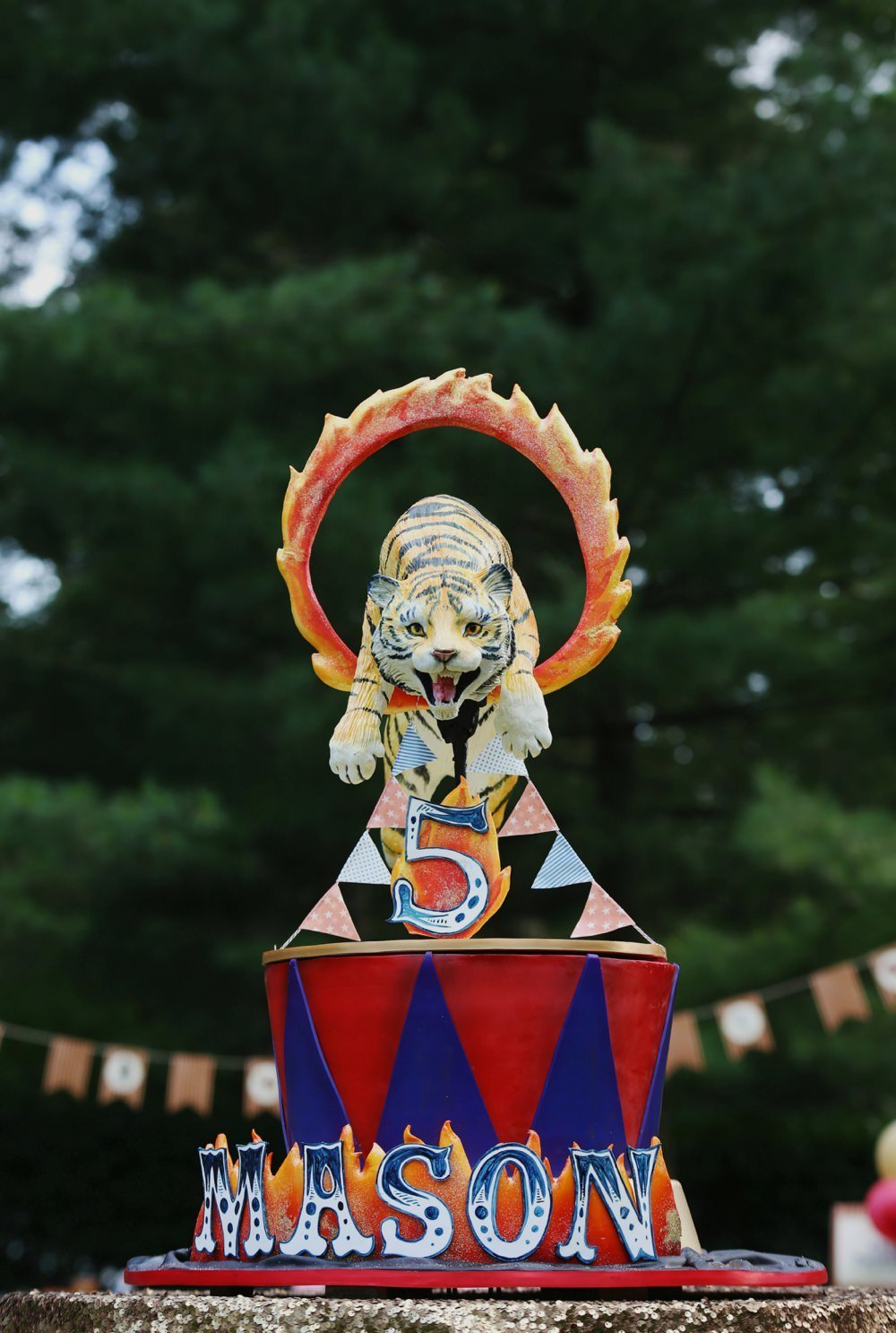ct_party_planner_circus_birthday_0074