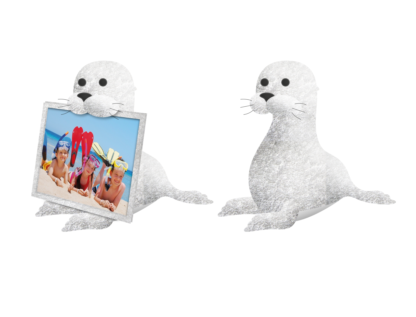 Towel Picture Frame-SEAL-PRESENTATION