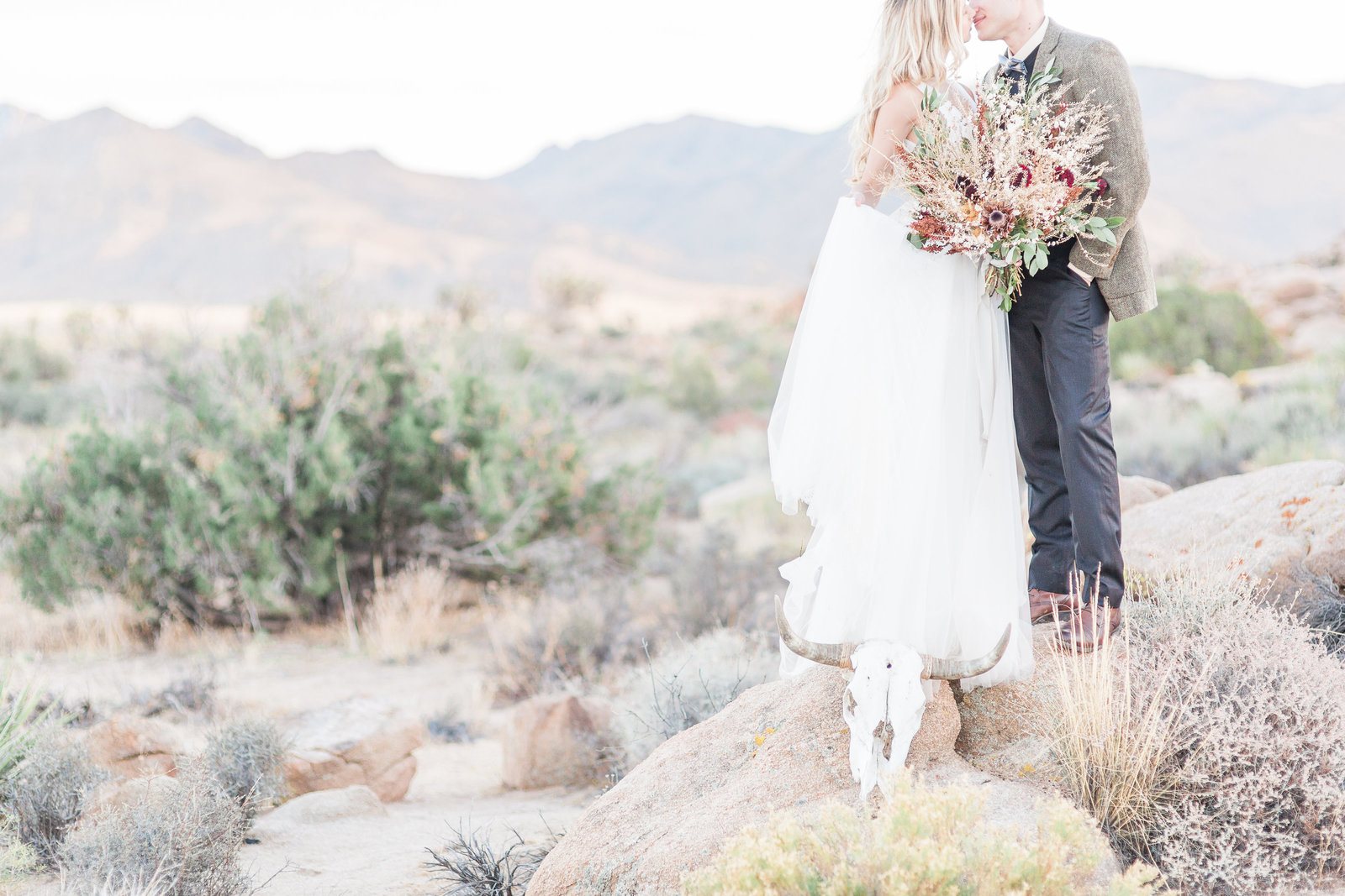 Bride and Groom destination elopement portrait in Joshua Tree, CA by C. elyse photos