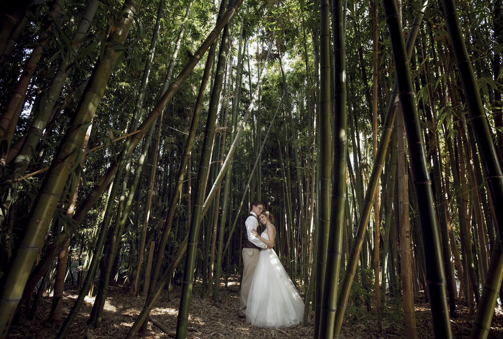 bride and groom embracing in a bamboo forest