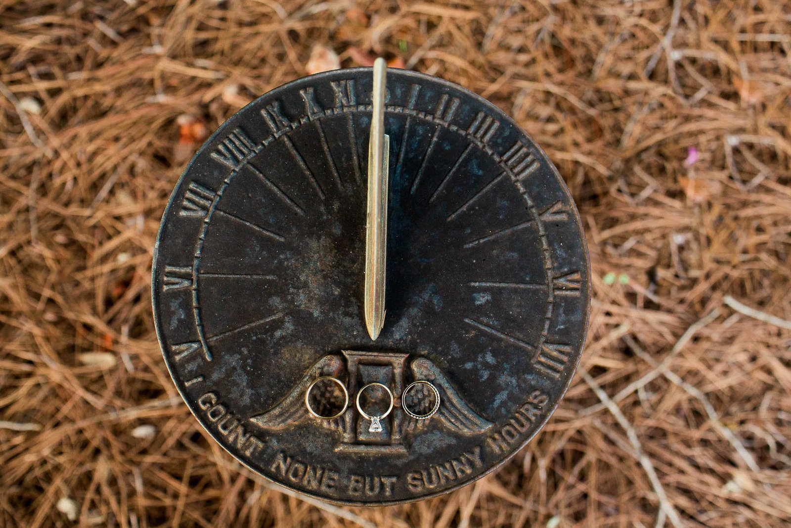 Rings rest on antique sundial, Oakland Plantation, Mt Pleasant, South Carolina