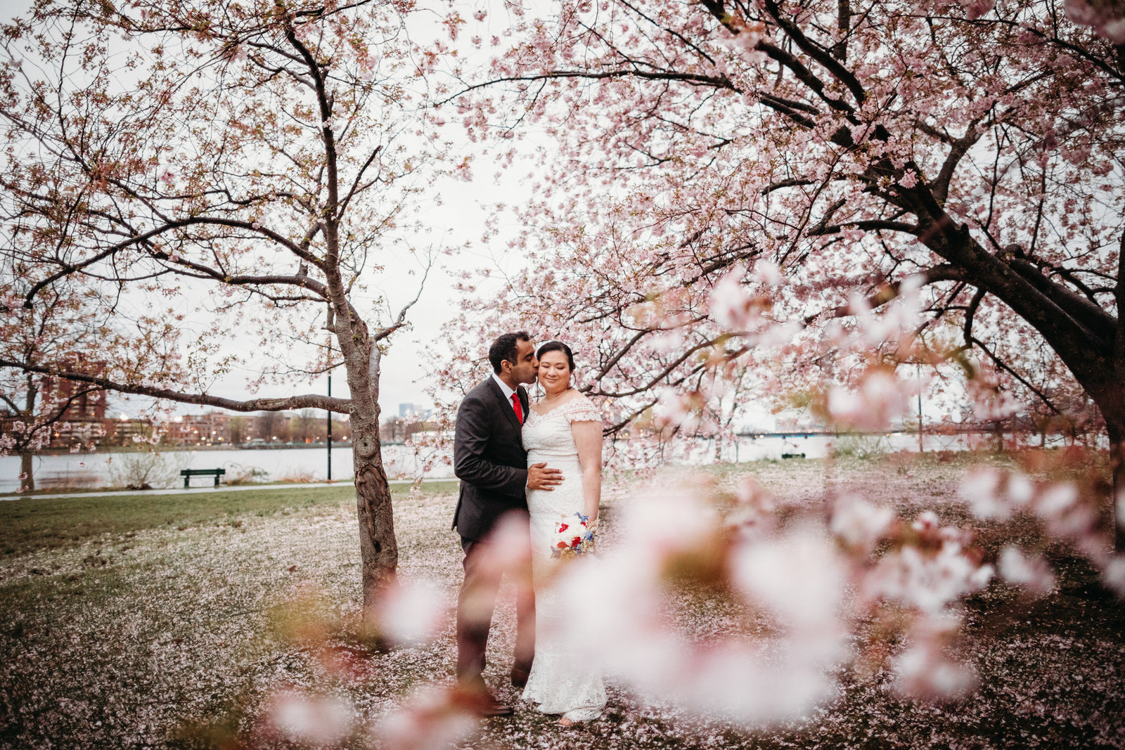 bride and groom embrace under the cherry blossoms in boston ma