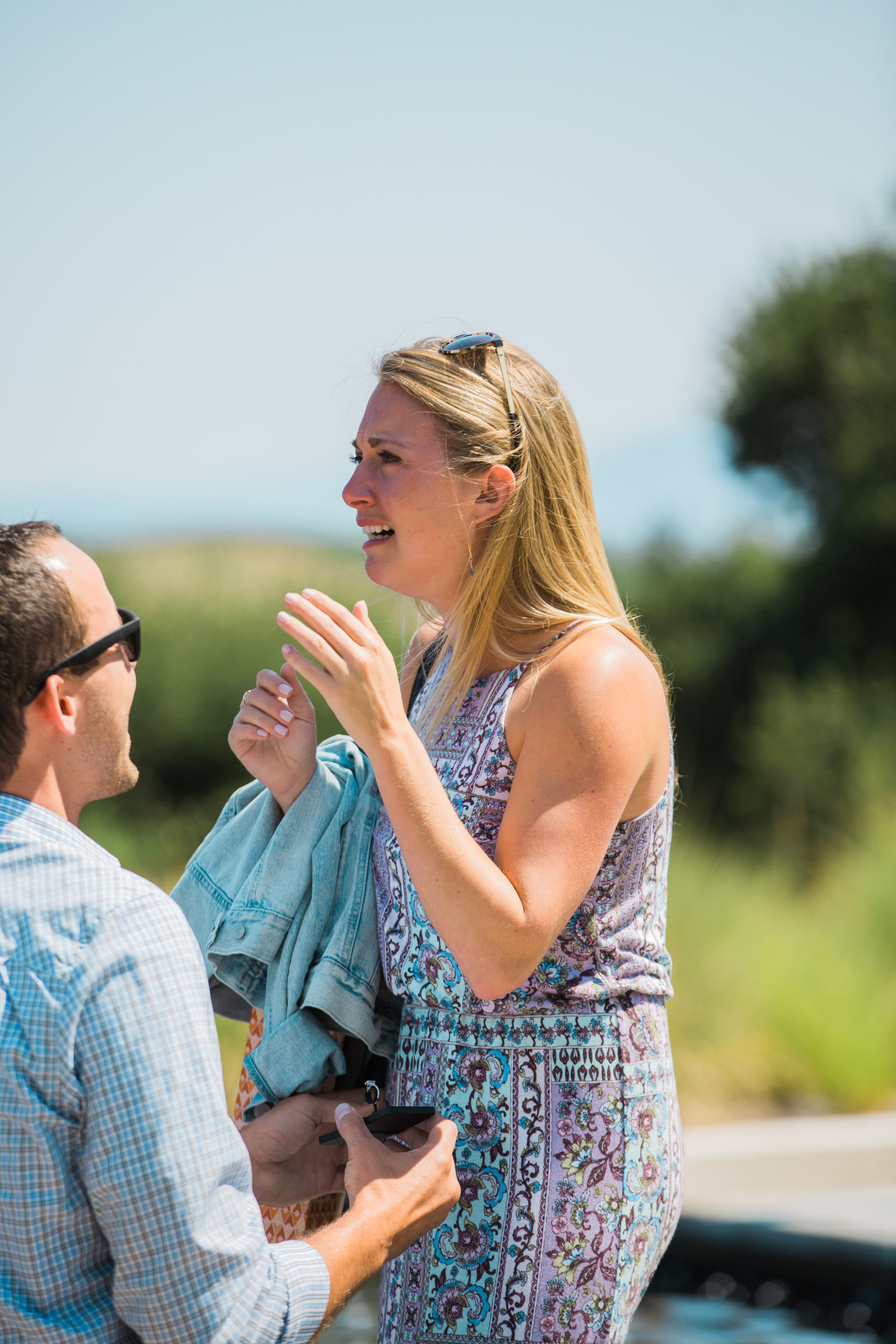 surprise proposal at artesa vineyards and winery emotional reaction
