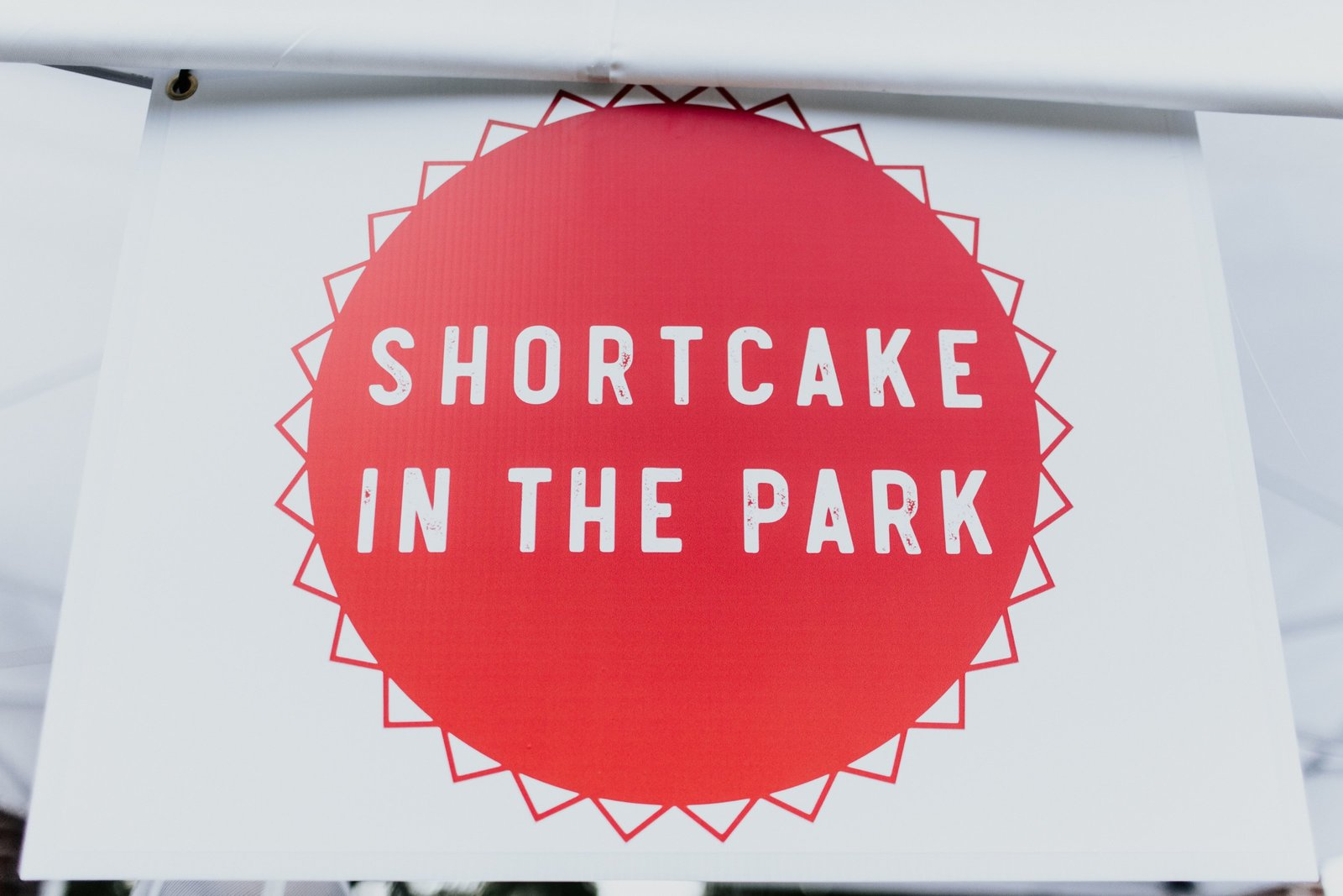 2019 West Tennessee Strawberry Festival - Shortcake in the park - 24