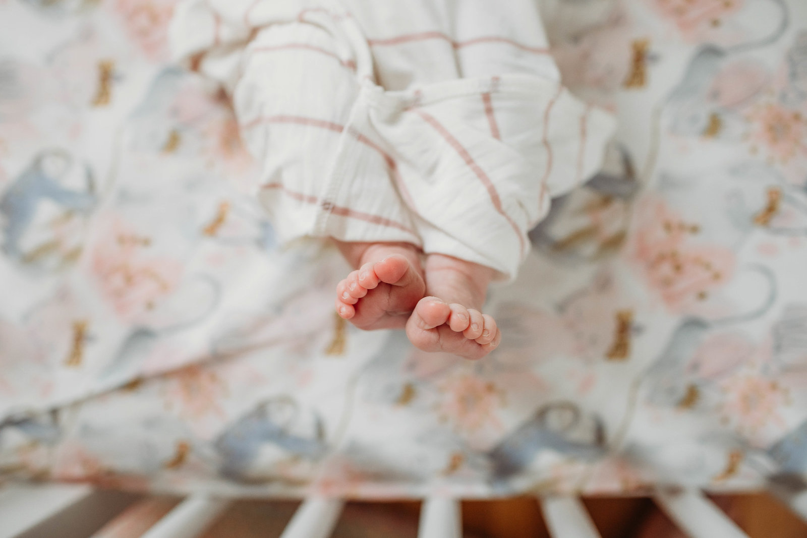 newborn toes above floral crib sheet during cohasset newborn session