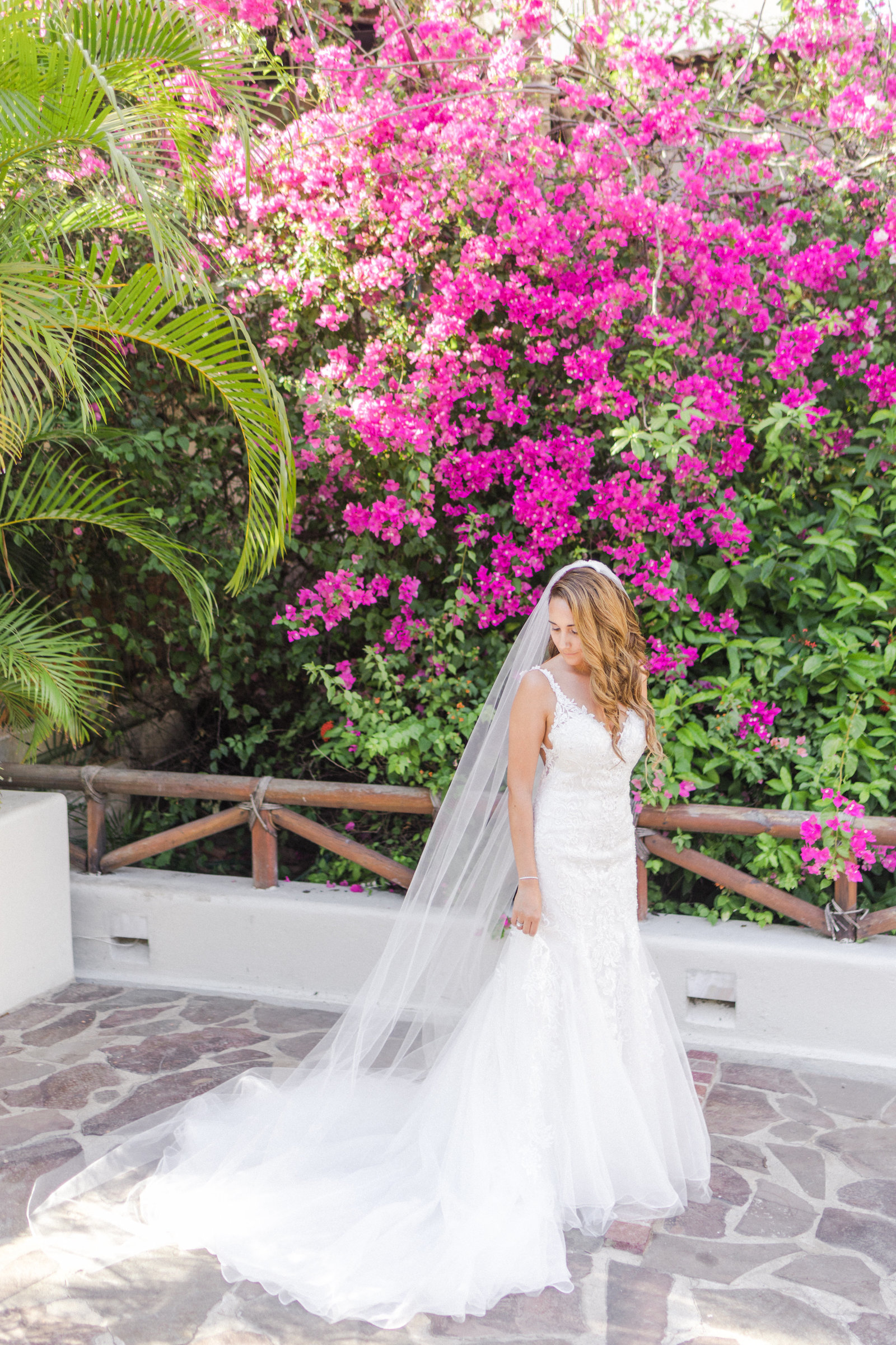 Puerto Vallarta Playa Fiesta  Wedding