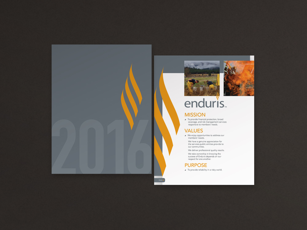 Enduris2