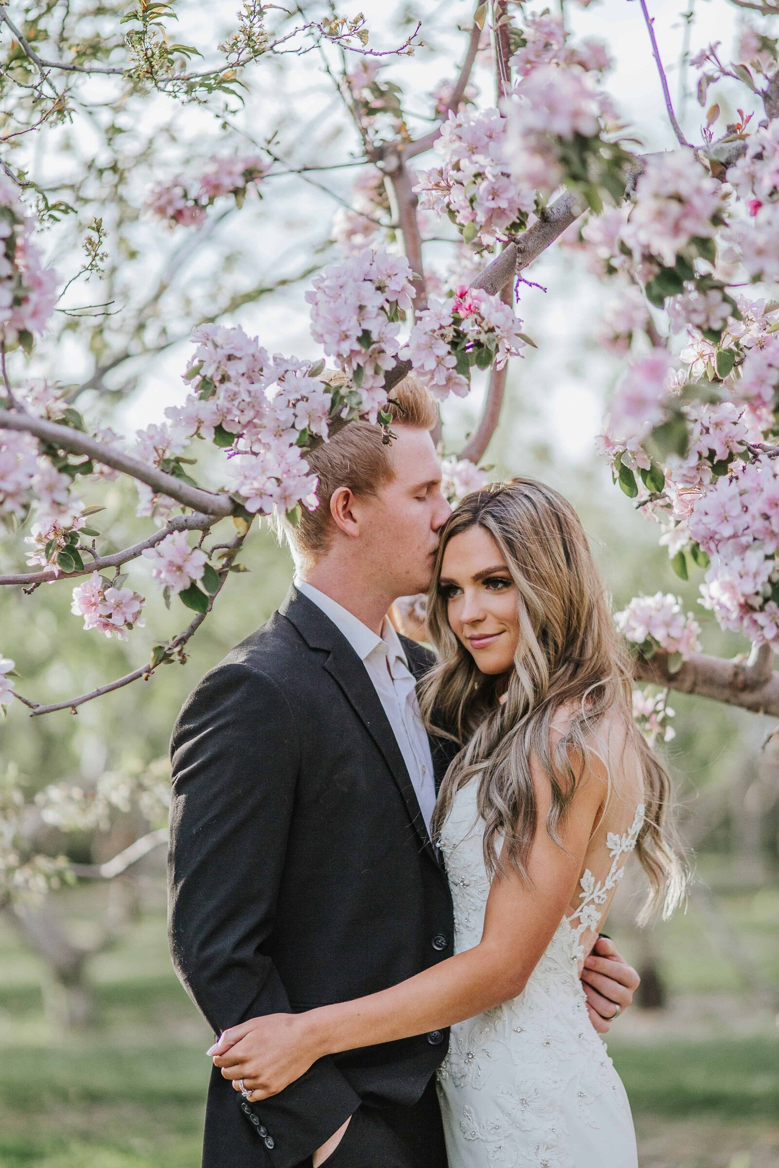 groom kissing brides forhead by tree with pink flowers in Chattanooga Tennessee