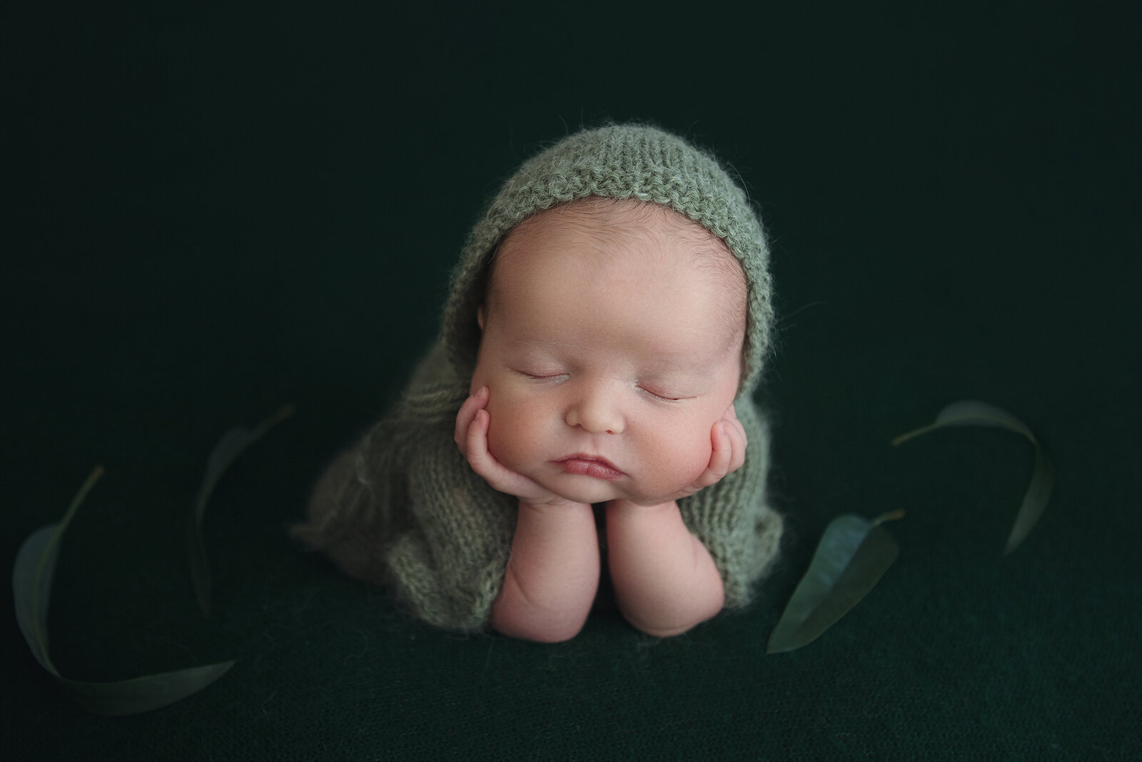 Professional studio portrait of newborn baby posed asleep, green props