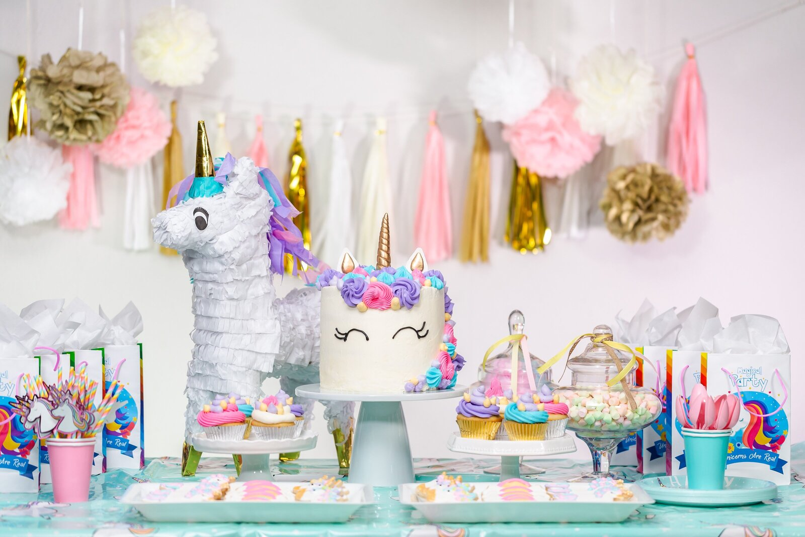 unicornparty