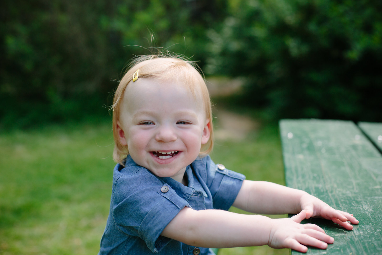 Toddler Photographer in Falls Church
