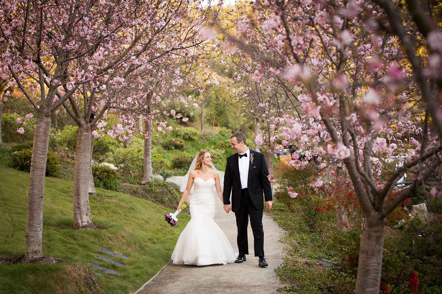 bride and groom walking through the cherry blossom trees