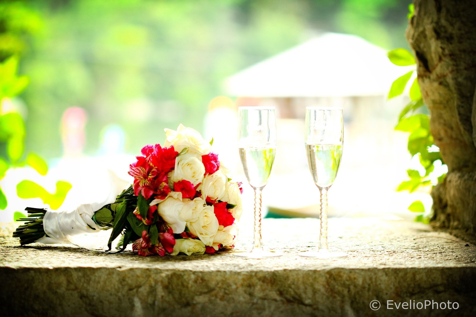 Mohonk-Mountain-House-Wedding-Photos-48-0169