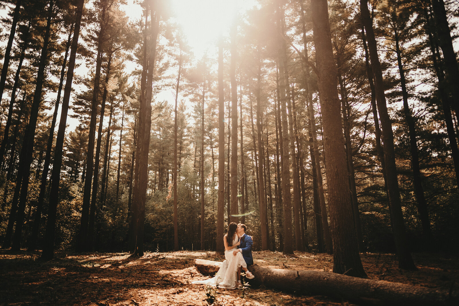 pine tree wedding