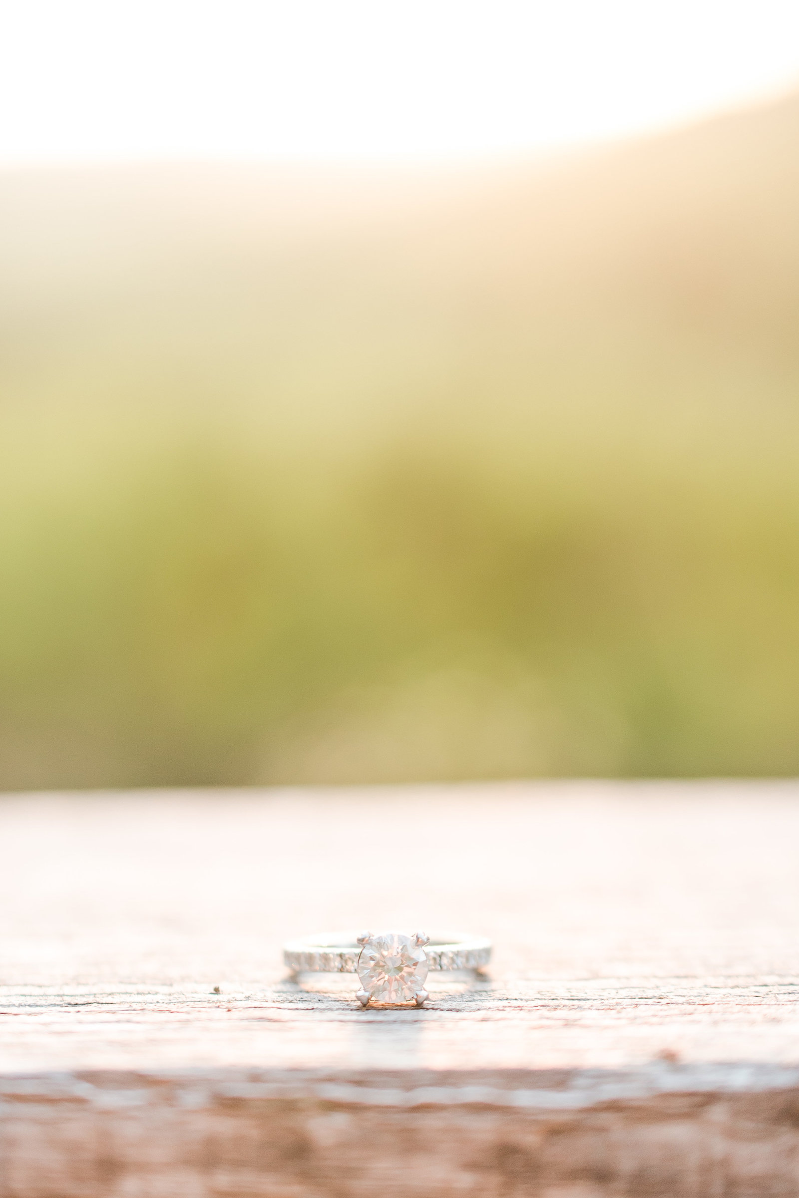 Engagement ring shot at Brown County State Park