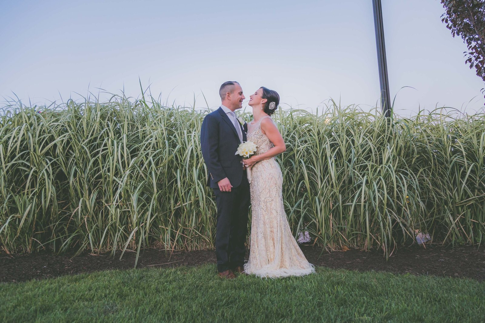 Bride and groom laugh with tall grass in background.