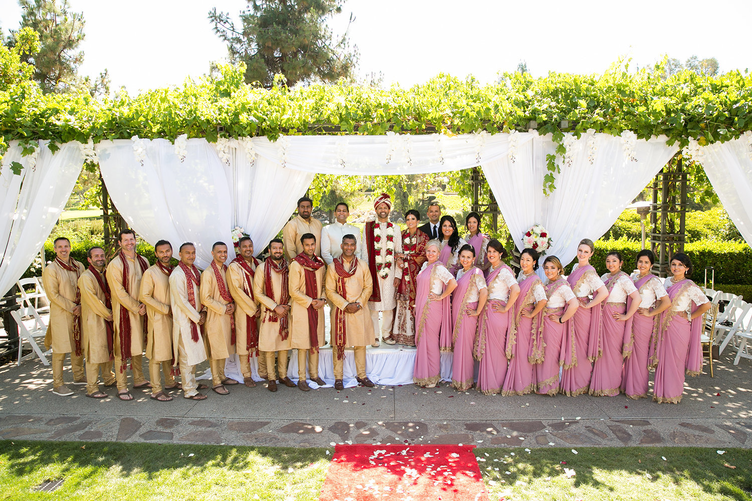 Large wedding party portrait at an Indian Wedding