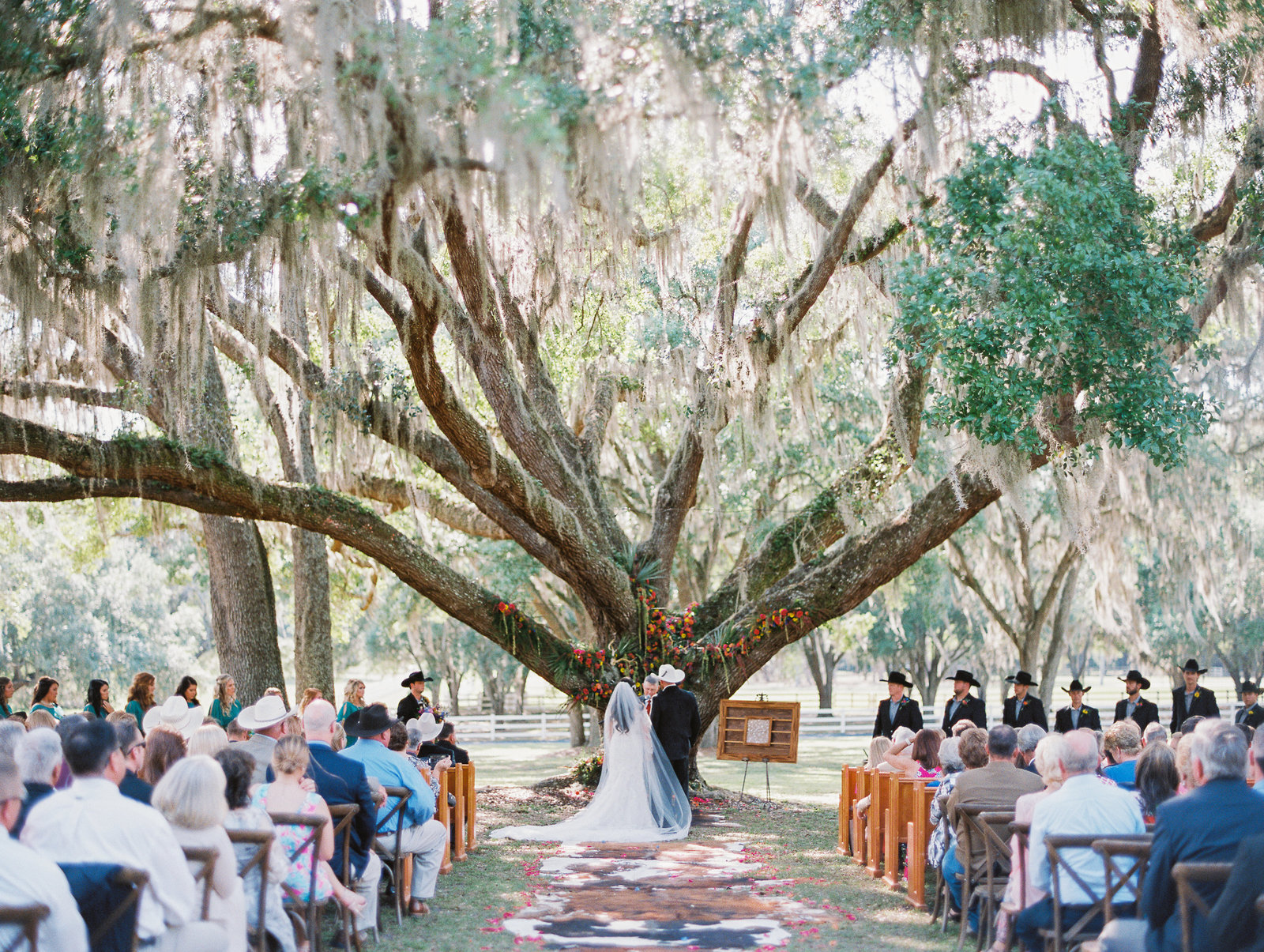 farm rustic wedding ranch wedding oak tree wedding